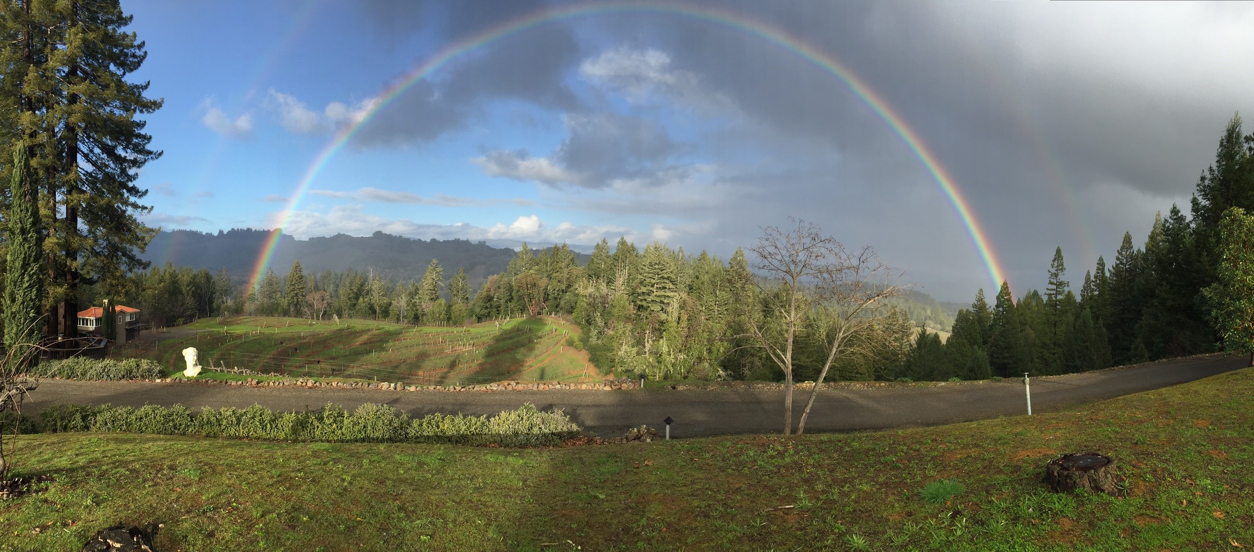 Rainbow Panarama Jan 2016.jpg