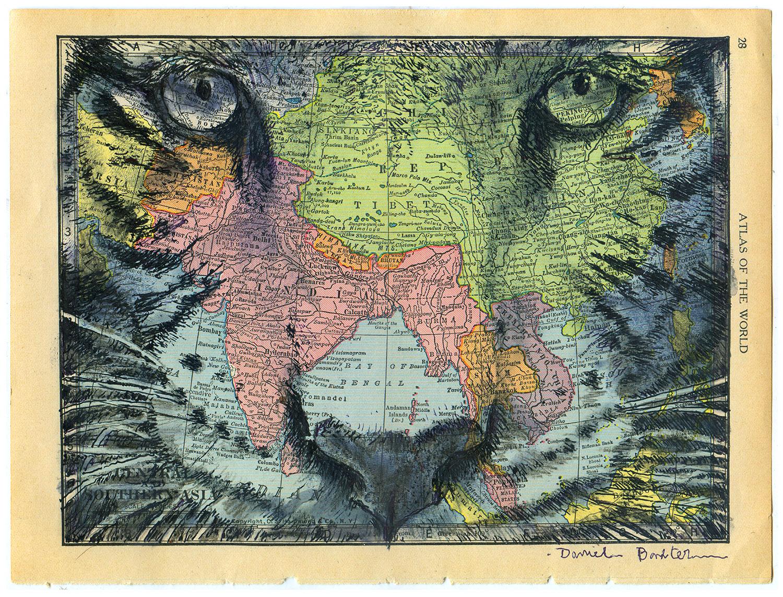 Daniel Baxter Tiger portrait.jpg