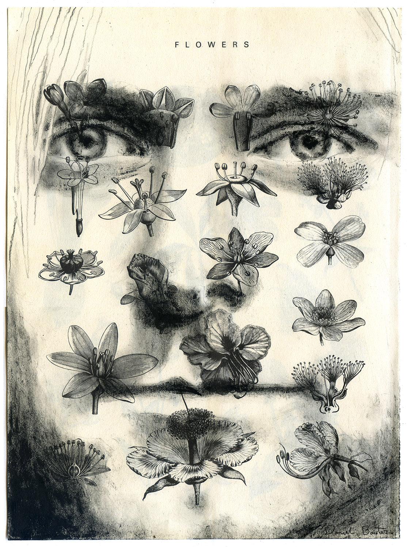 Copyright Daniel Baxter Kurt Cobain portrait.jpg