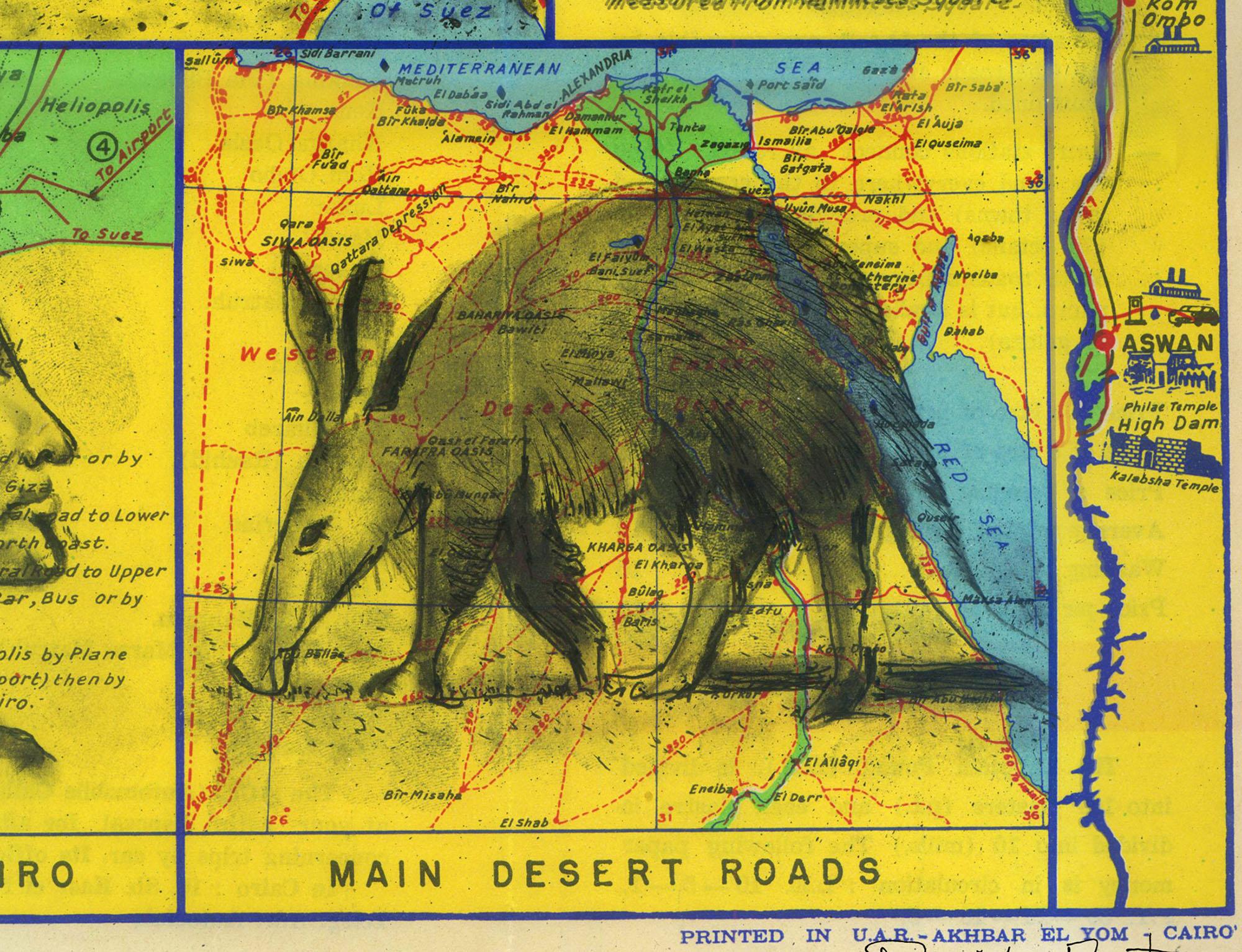 An Egyptian aardvark