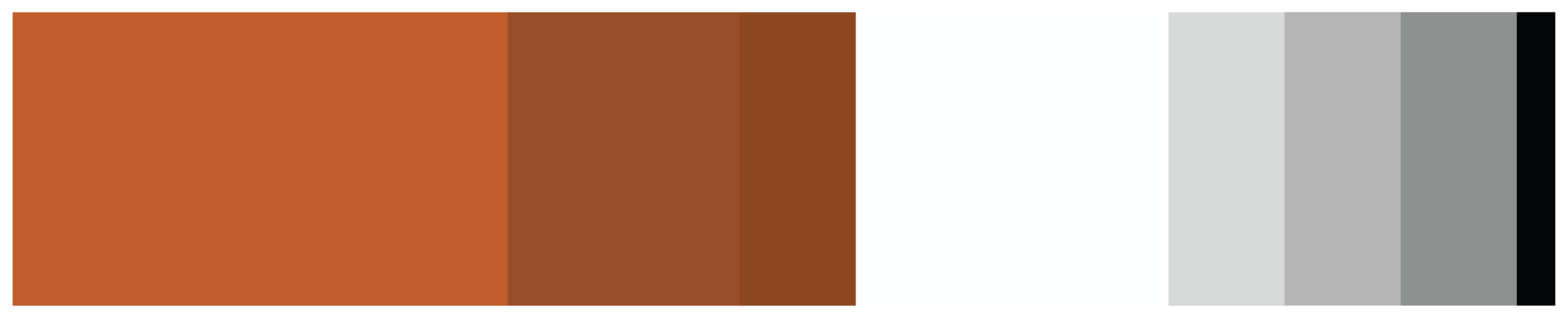 Beef Cake Color Pallete-03.png