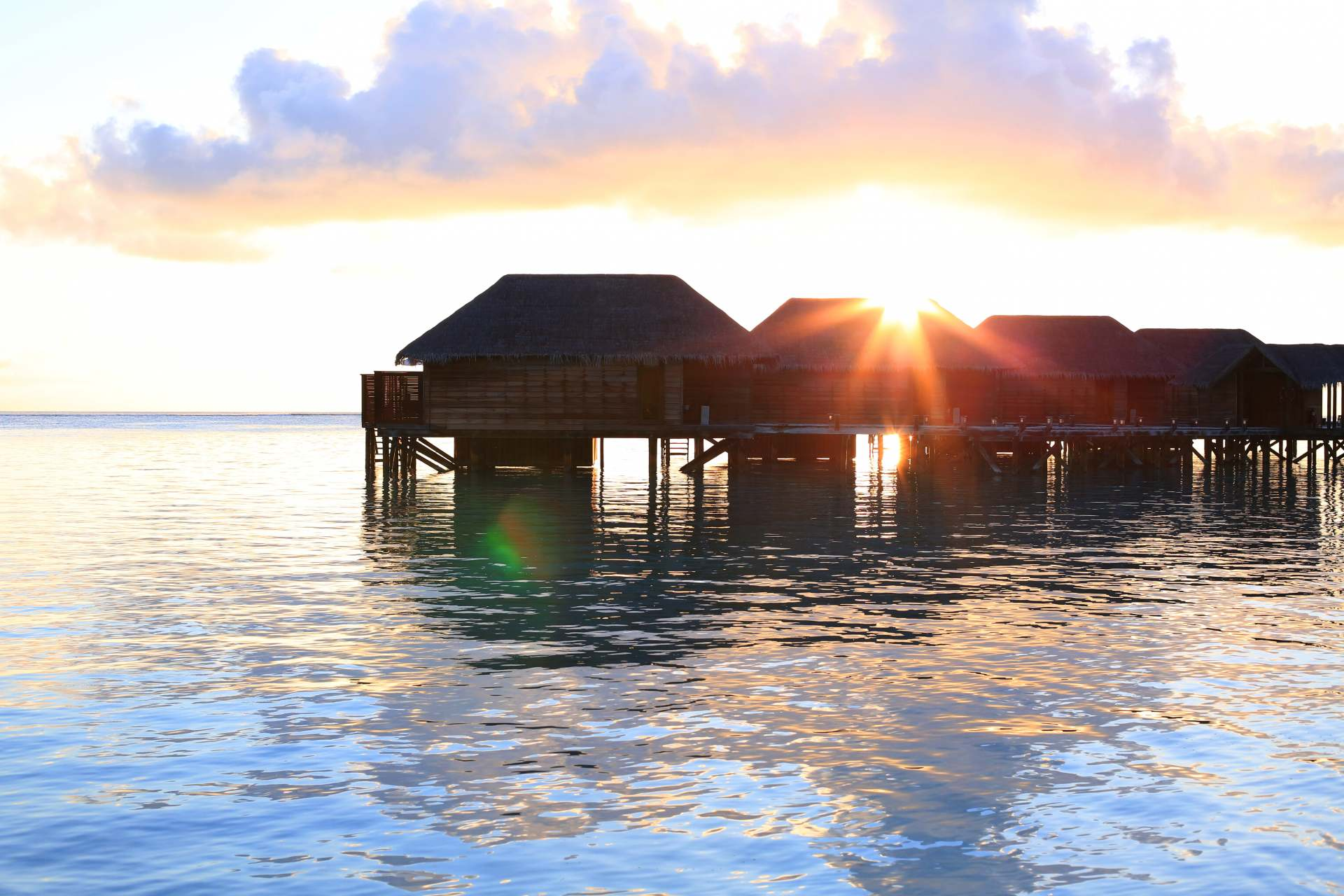 Maldives credit-  In The Frow