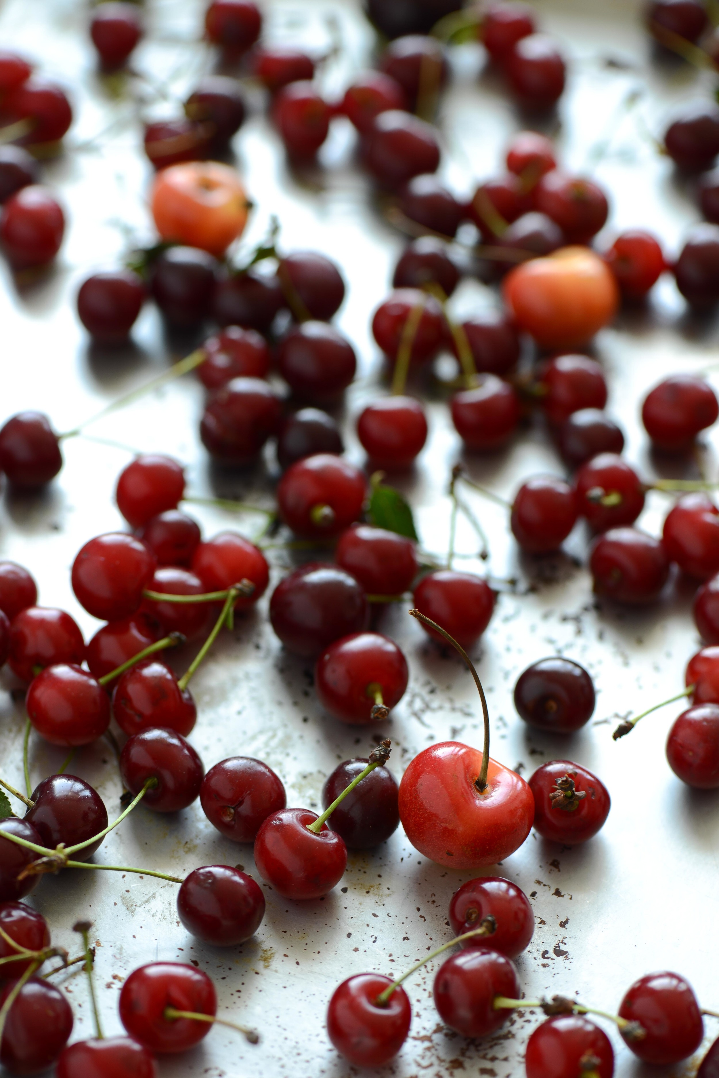 cherries small.jpg
