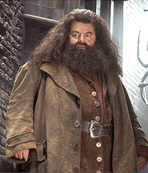 Robbie Coltrane as Rubeus Hagrid in Harry Potter and the Chamber of Secrets (Wikipedia)