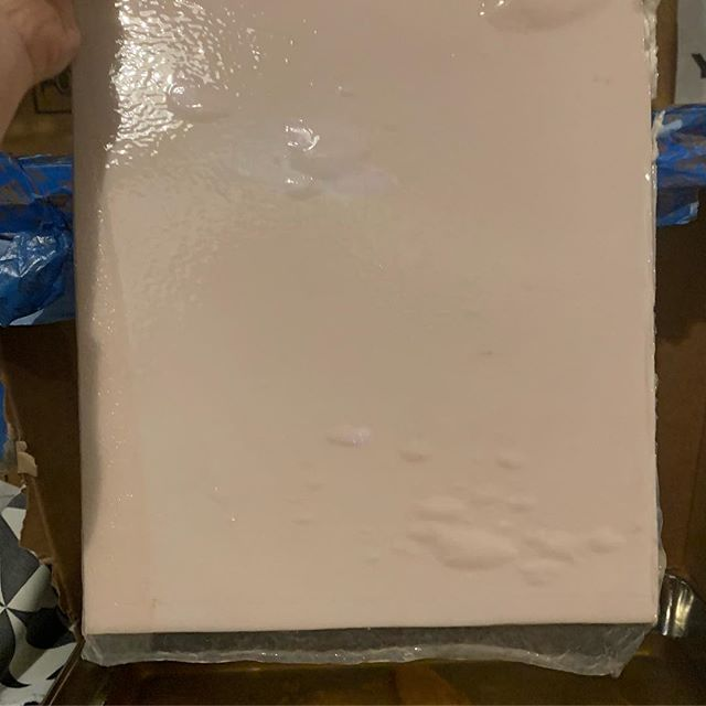 Bacterial cellulose grown on cardboard