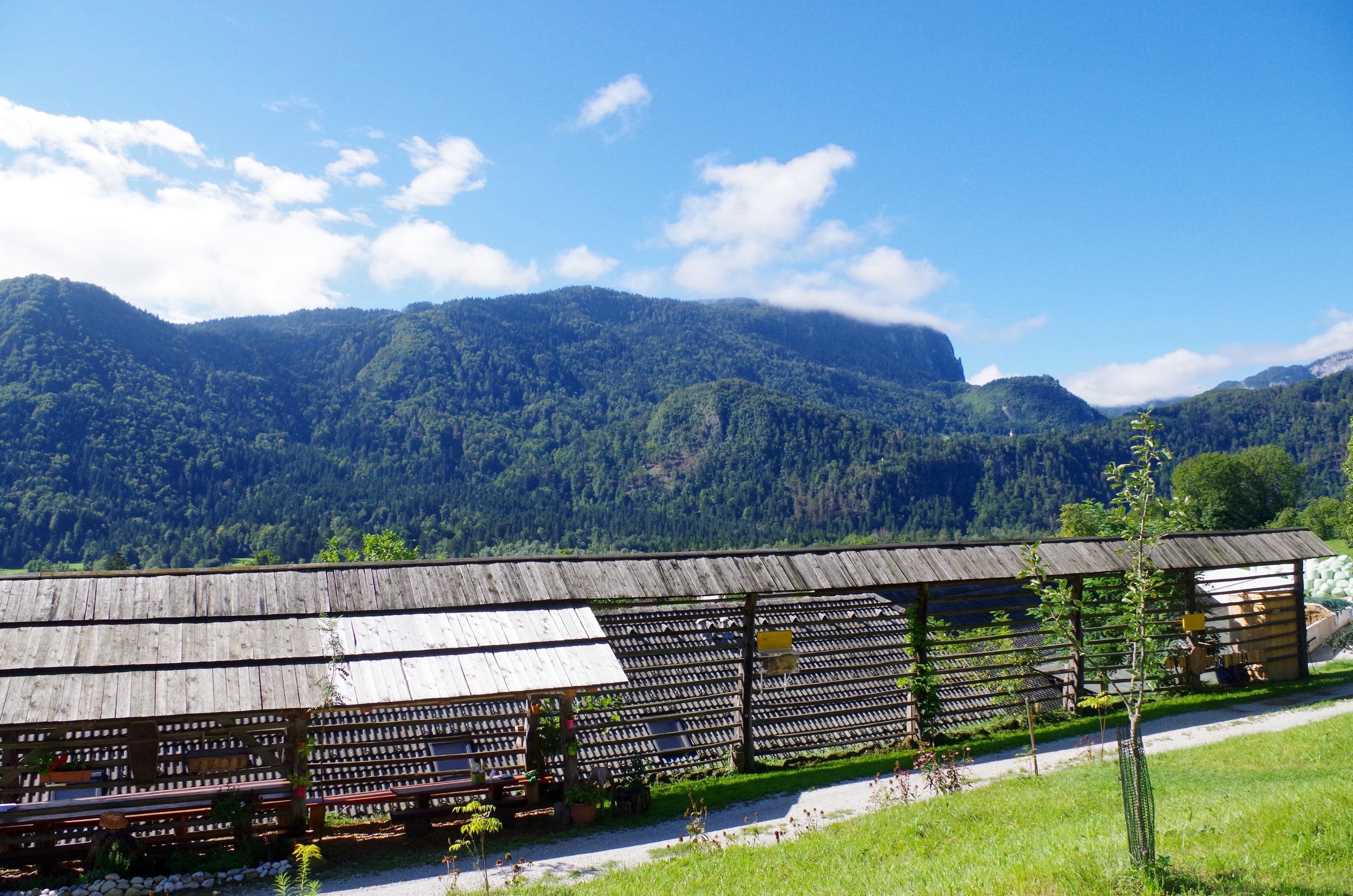 The view from Kralov Med