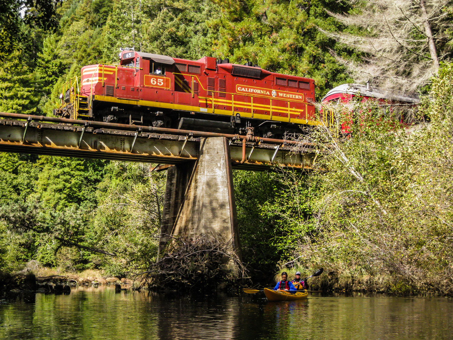 Travel back into the past on the vintage Skunk Train in Fort Bragg