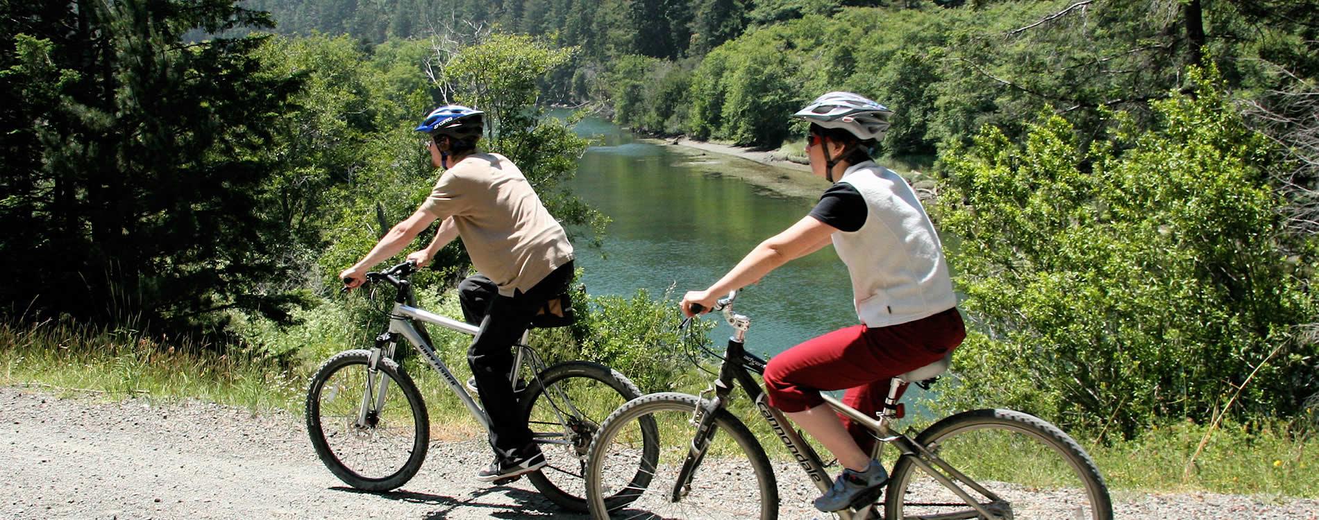 mendocino-bikes-on-big-river-trail.jpg