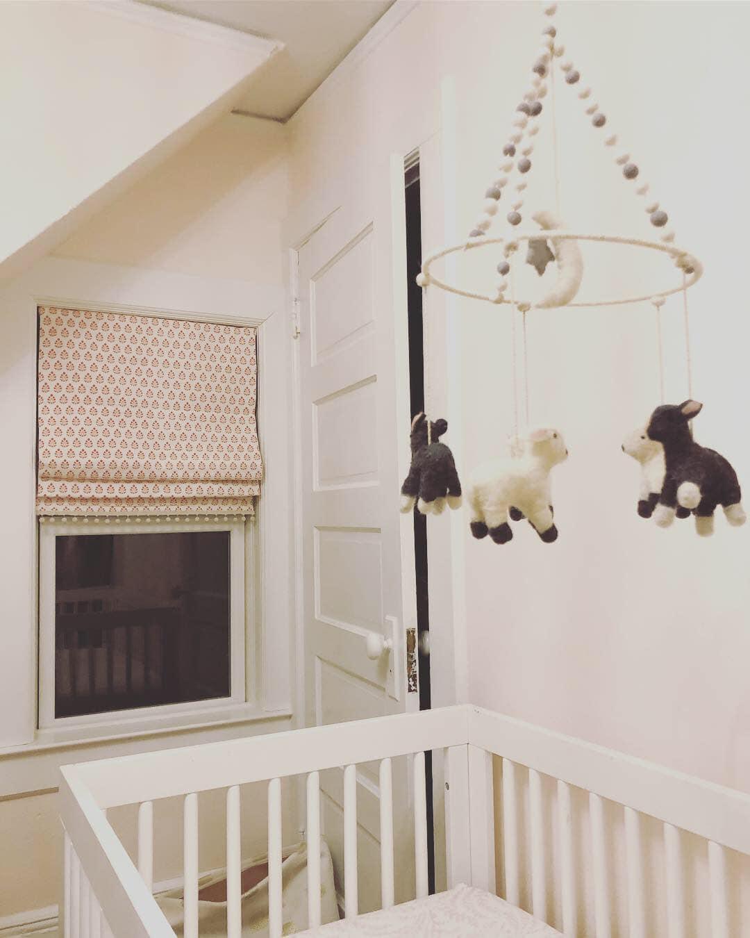 nurseryromanshade.jpg