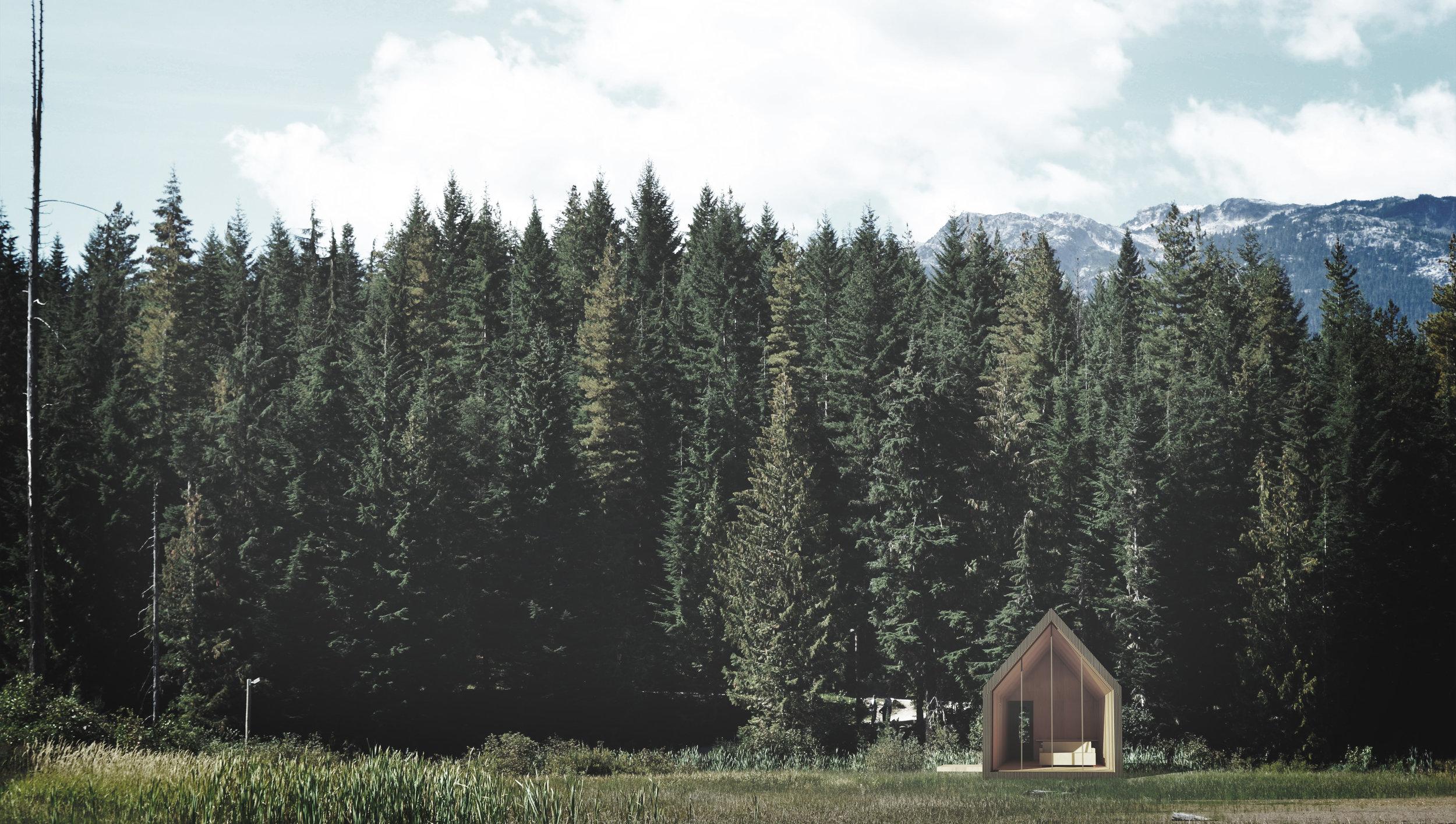 Stealth Cabin (In design)