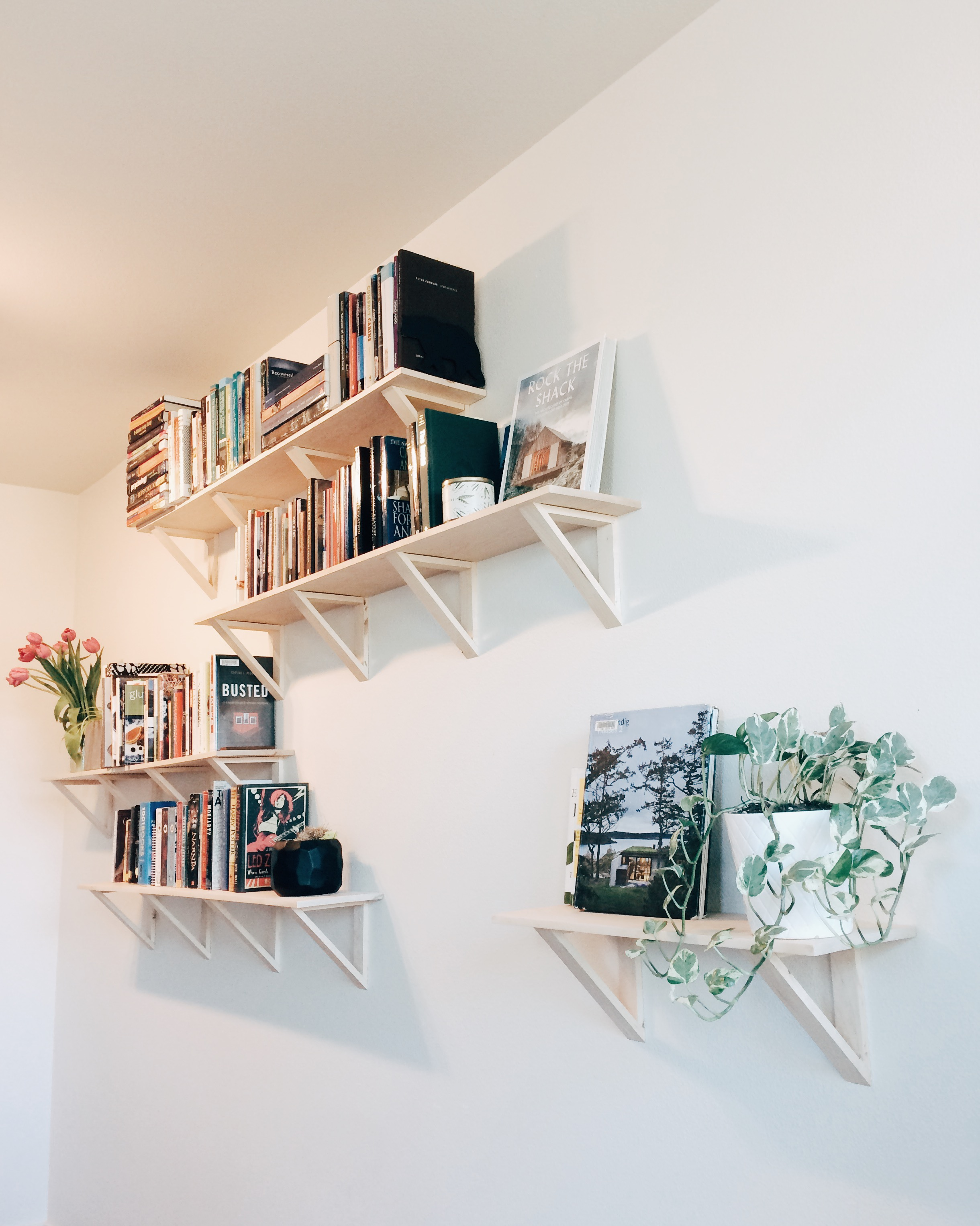 Mechanism architecture - TRI Shelves.jpg
