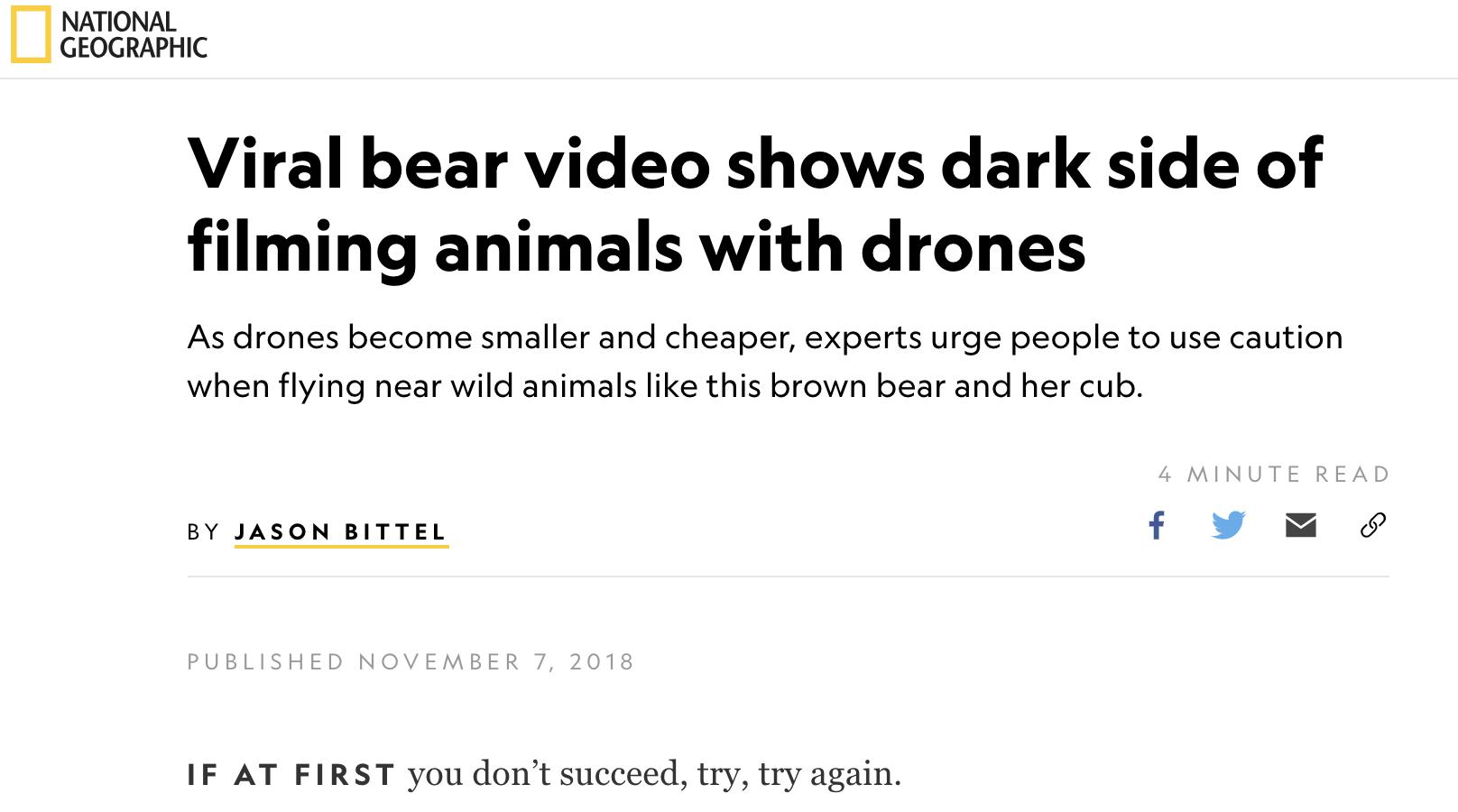 2018 Nat Geo bears.png