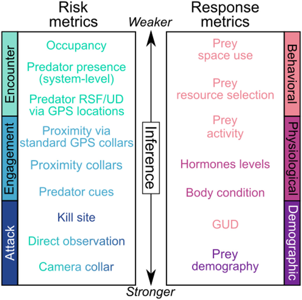"Fig. 1. Examples of common metrics used to assess  predation  risk (left side) and responses of prey to risk (right side, also referred to as risk effects). Risk metrics are classified according to the stage of the predation process they measure (light green = encounter, light blue = engagement, dark blue = attack, multi-color = all stages). Response metrics are classified into behavioral (light pink), physiological (dark pink), and demographic (purple) categories. Metrics are coarsely organized along a gradient of weaker (top) to stronger (bottom) inference, with metrics closest to ""true"" predation risk and risk effects having stronger inference. (For interpretation of the references to color in this figure legend, the reader is referred to the web version of this article.)"