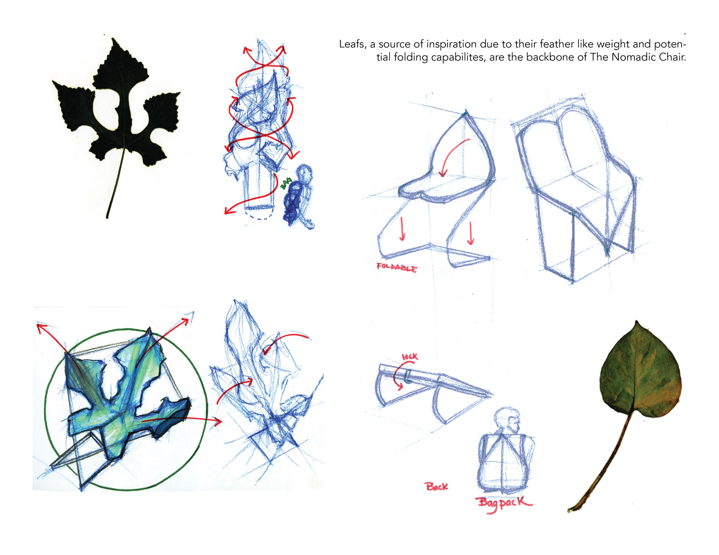 Drawing Captions Portfolio 2.jpg