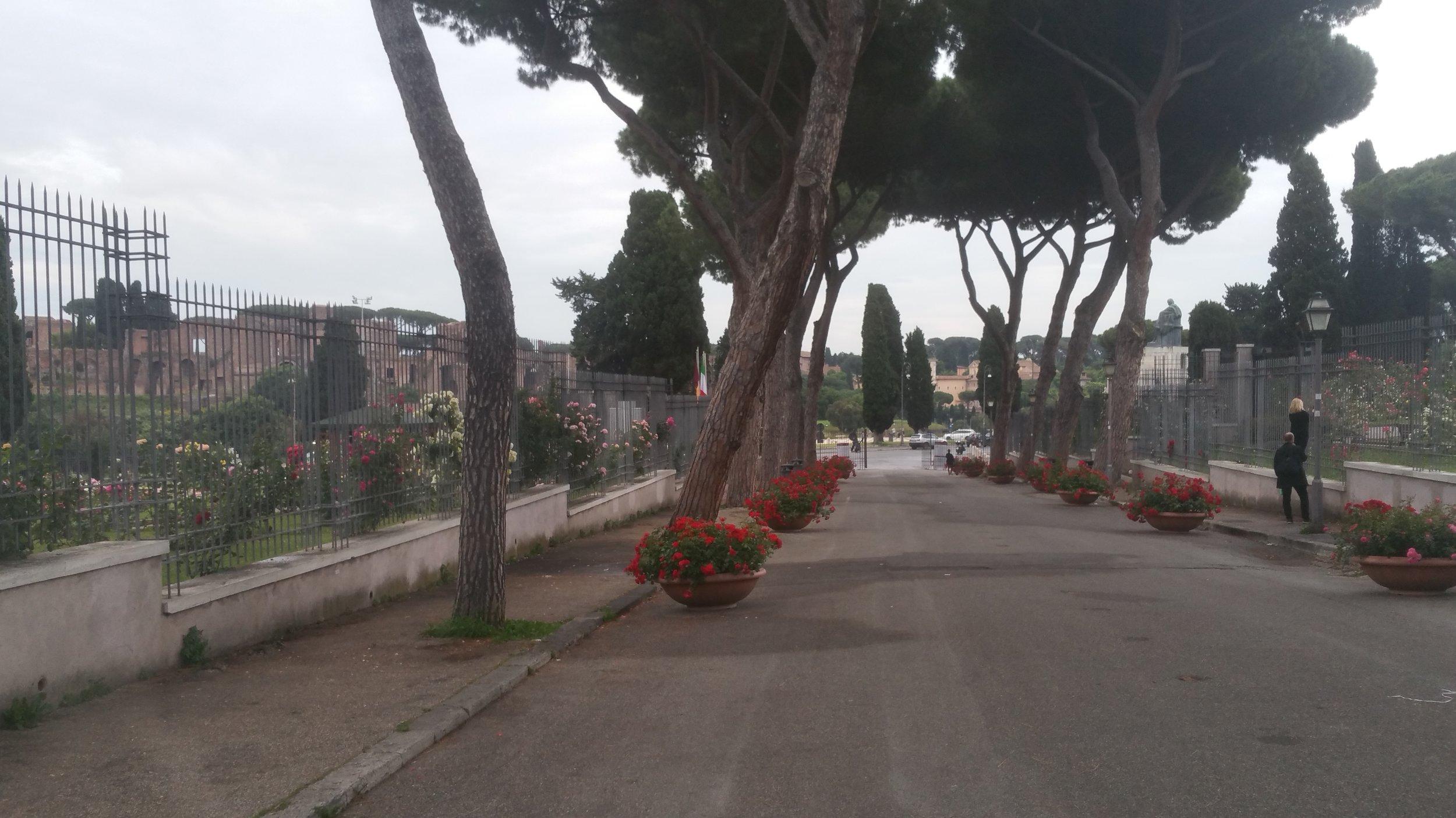 Garden in Rome, Italy