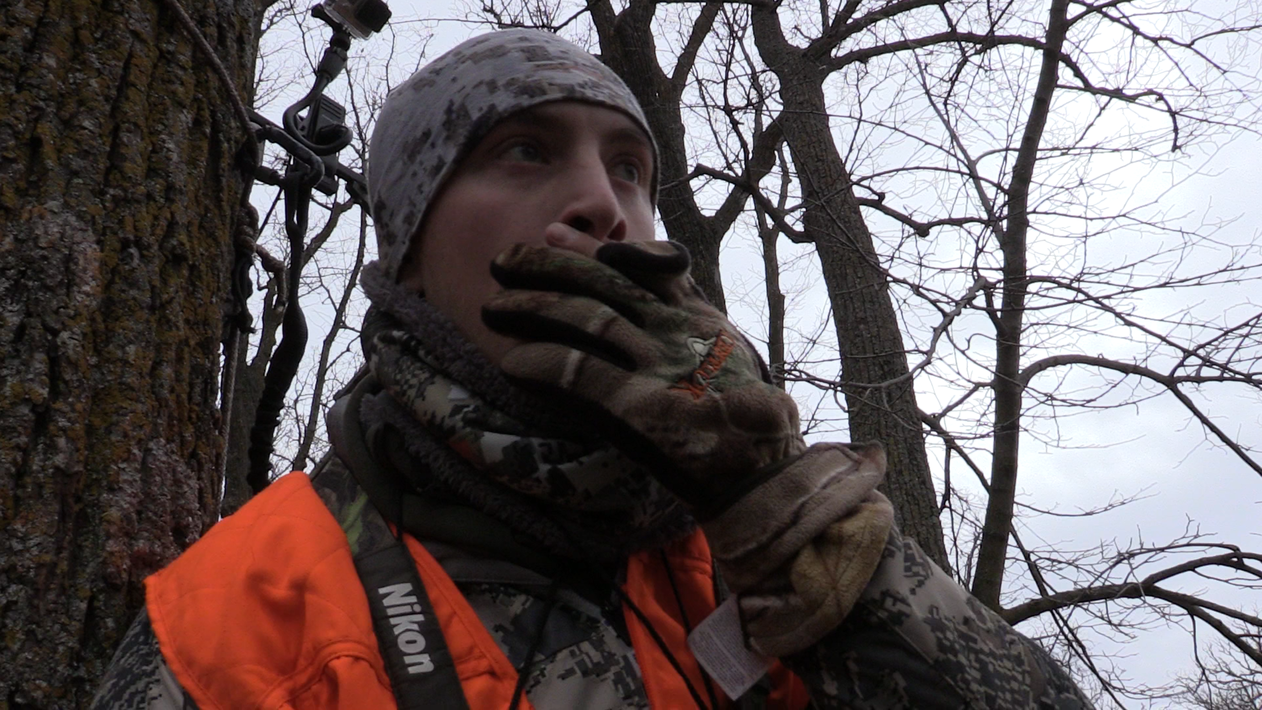 Moments after my shot opportunity on Nov. 17th. Not long after, my high would come crashing down in realization that I didn't make a lethal shot on the giant 8 pointer.