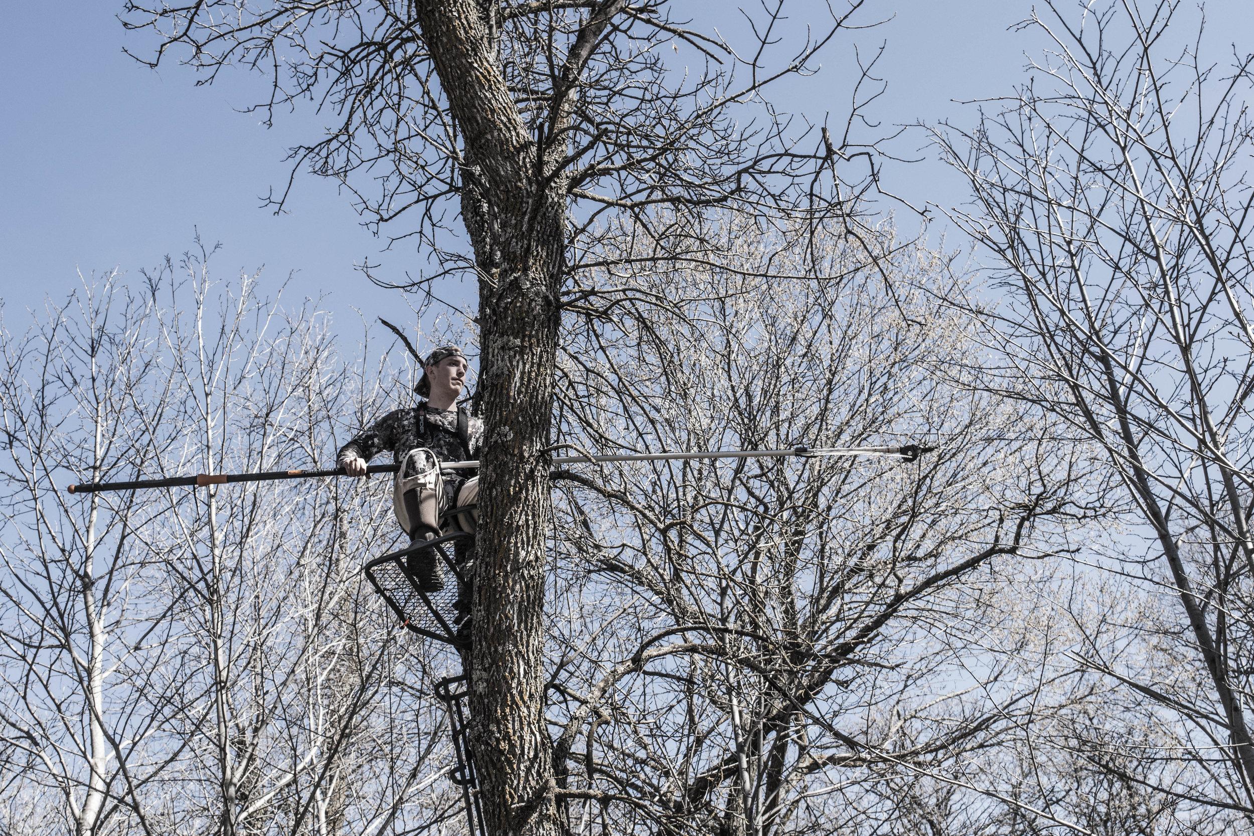 hanging-treestand