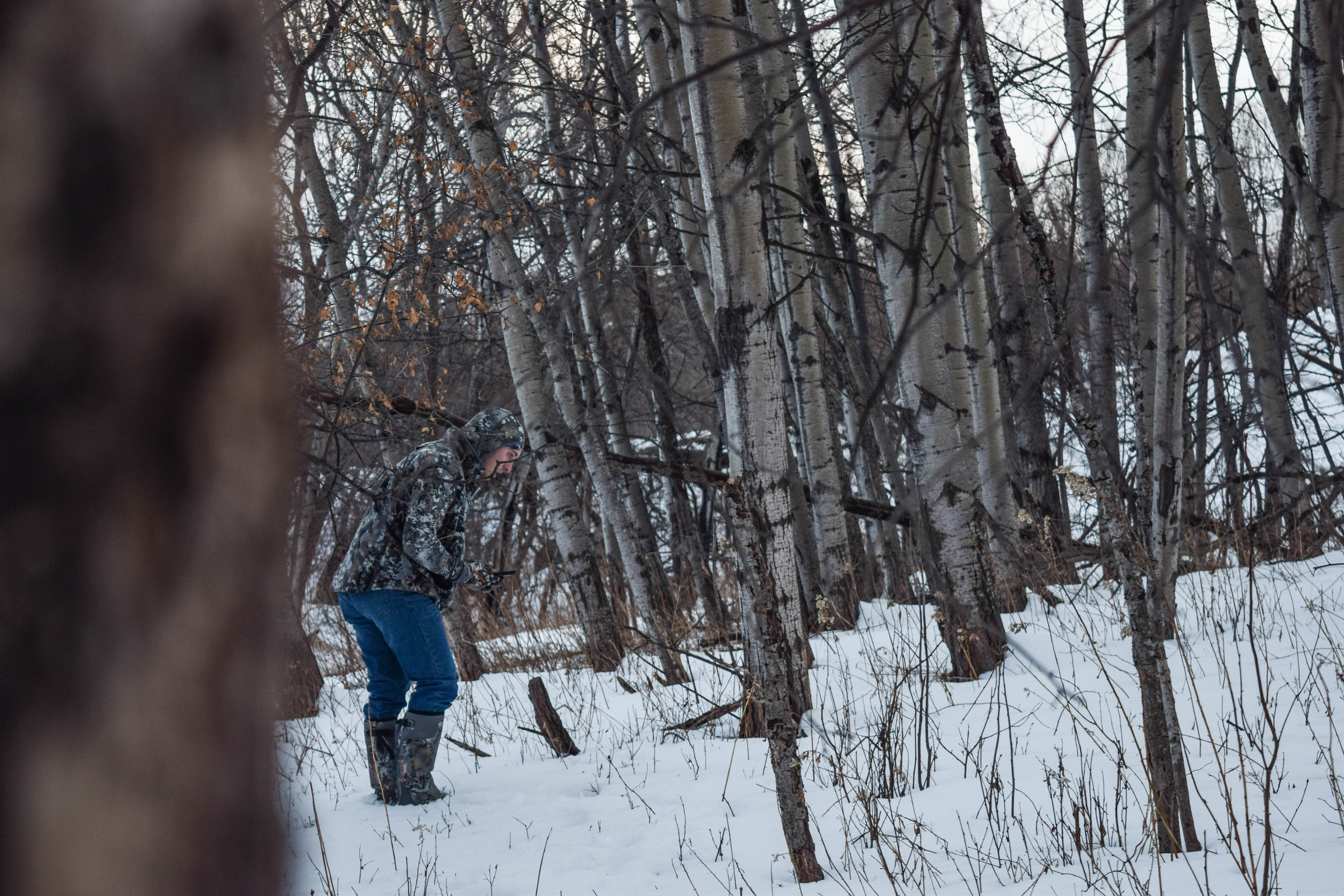 The duration of this years Northern Minnesota winter has made it hard to accomplish much while scouting.