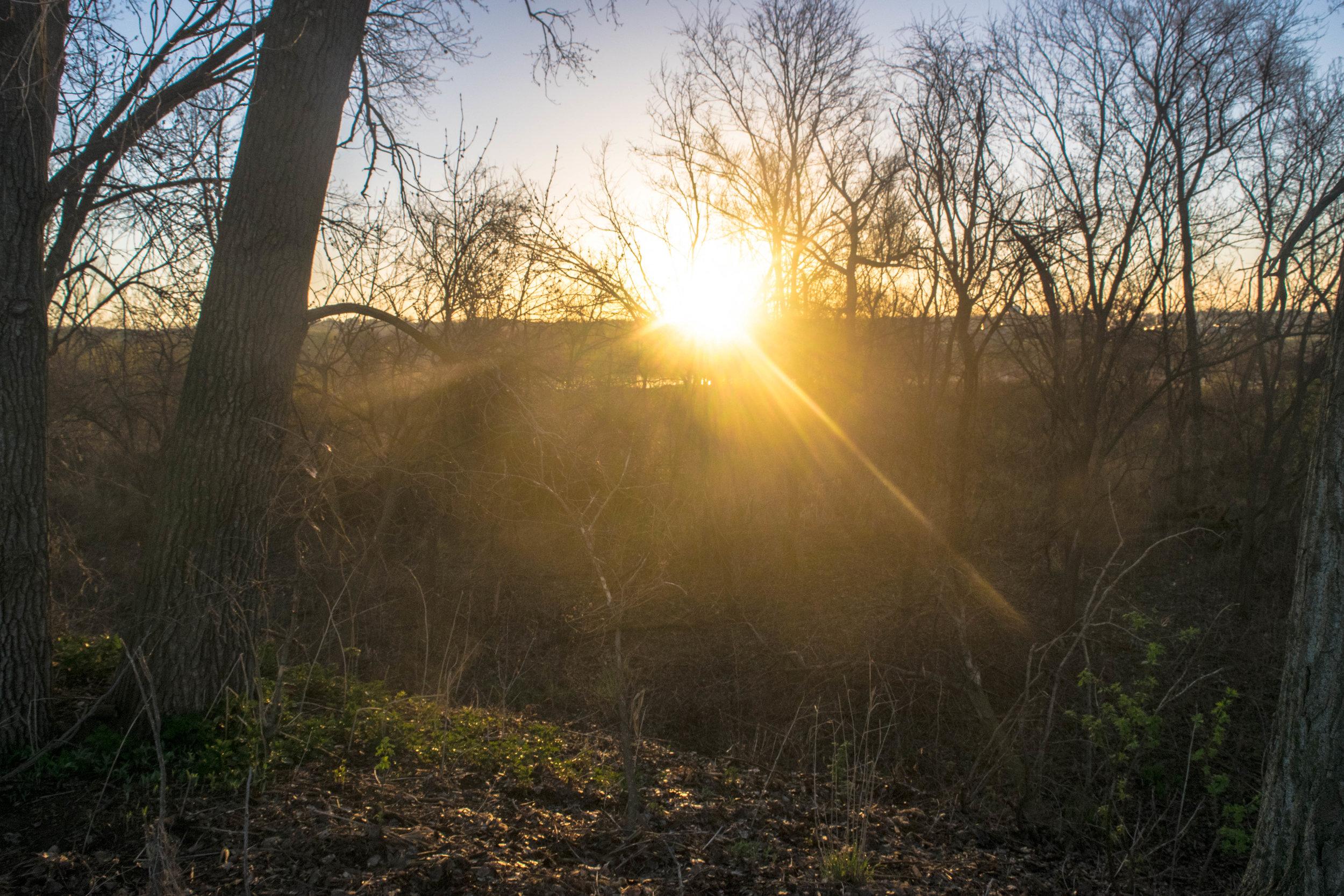 Sunrise on my first morning hunting turkeys