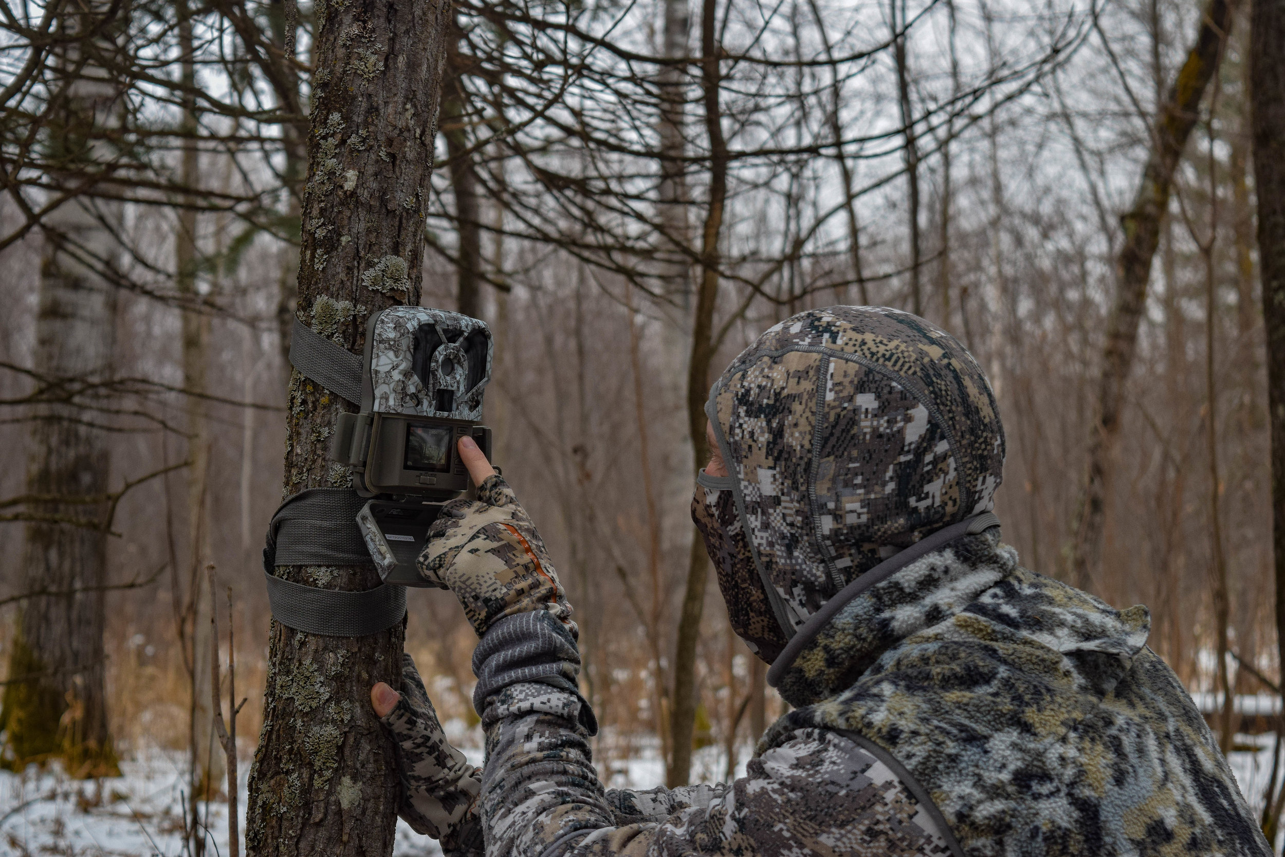 Trail cameras are a great way to help you find a mature buck to hunt in the late season.