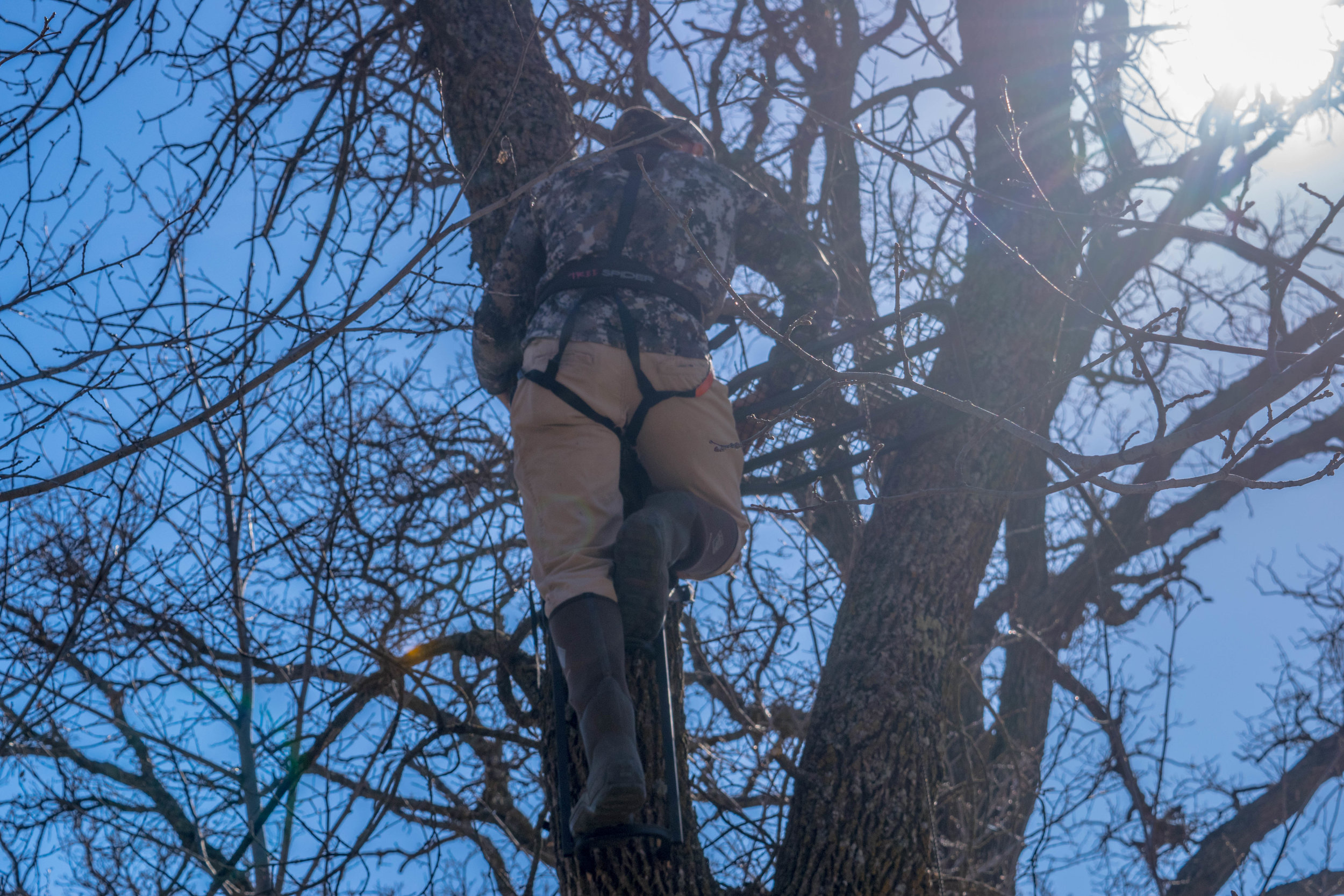Wearing a safety harness should be a must for deer hunters.