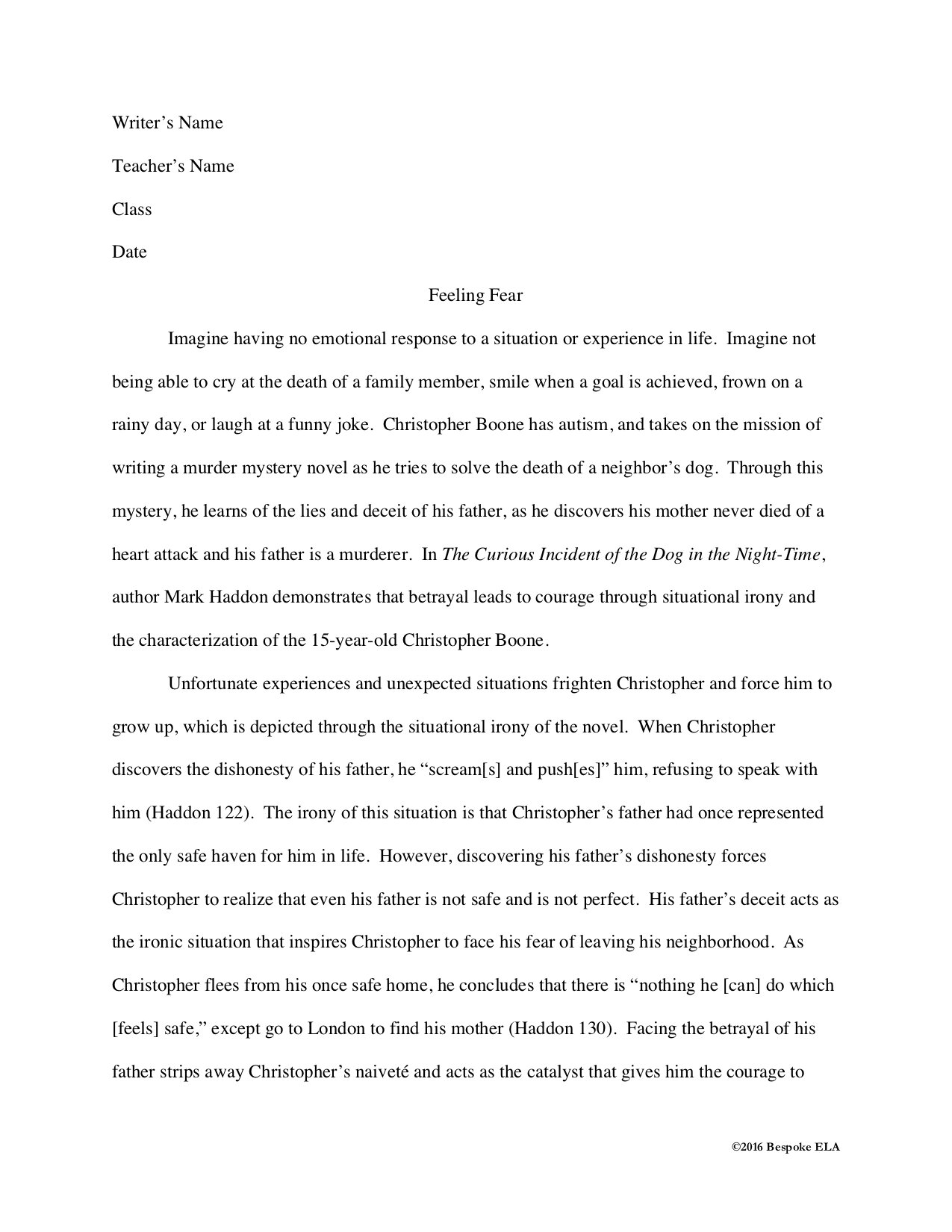Literary argument essay website writes essays for you