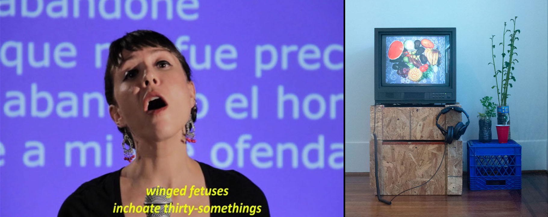 (L) Julia Barbosa Landois,  Star-Crossed II , 2013. Video still, 6:30 minutes. (R) Francis Almendarez,  Nuestro Hogar  (installation view), 2019. Multimedia with produce plants, dimensions variable.