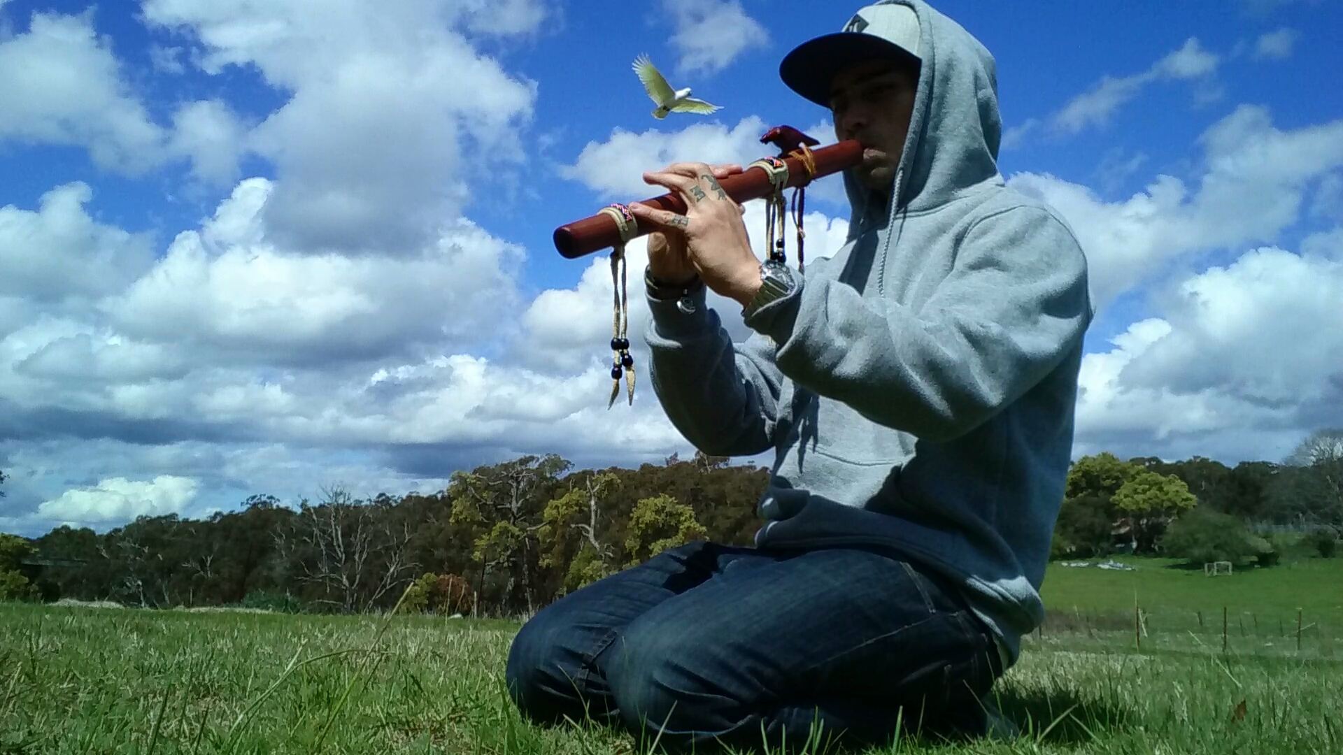 A cockatoo flying overheard as I spend some time in nature with my native-american flute.