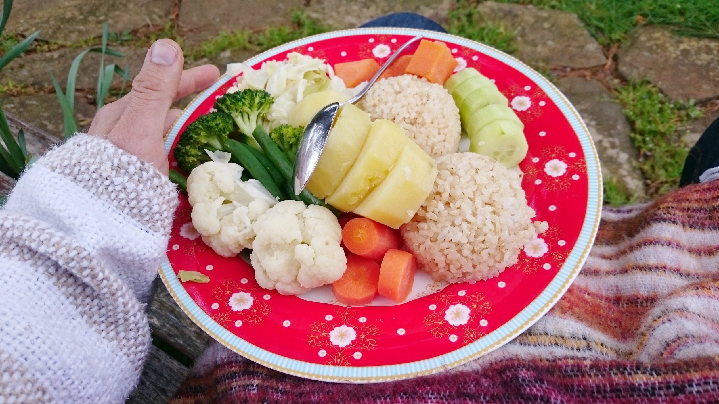 The standard meal of La Dieta: steamed vegetables and rice, Without any salt, oils or spices.  surprisingly, this became tastier as time went on.
