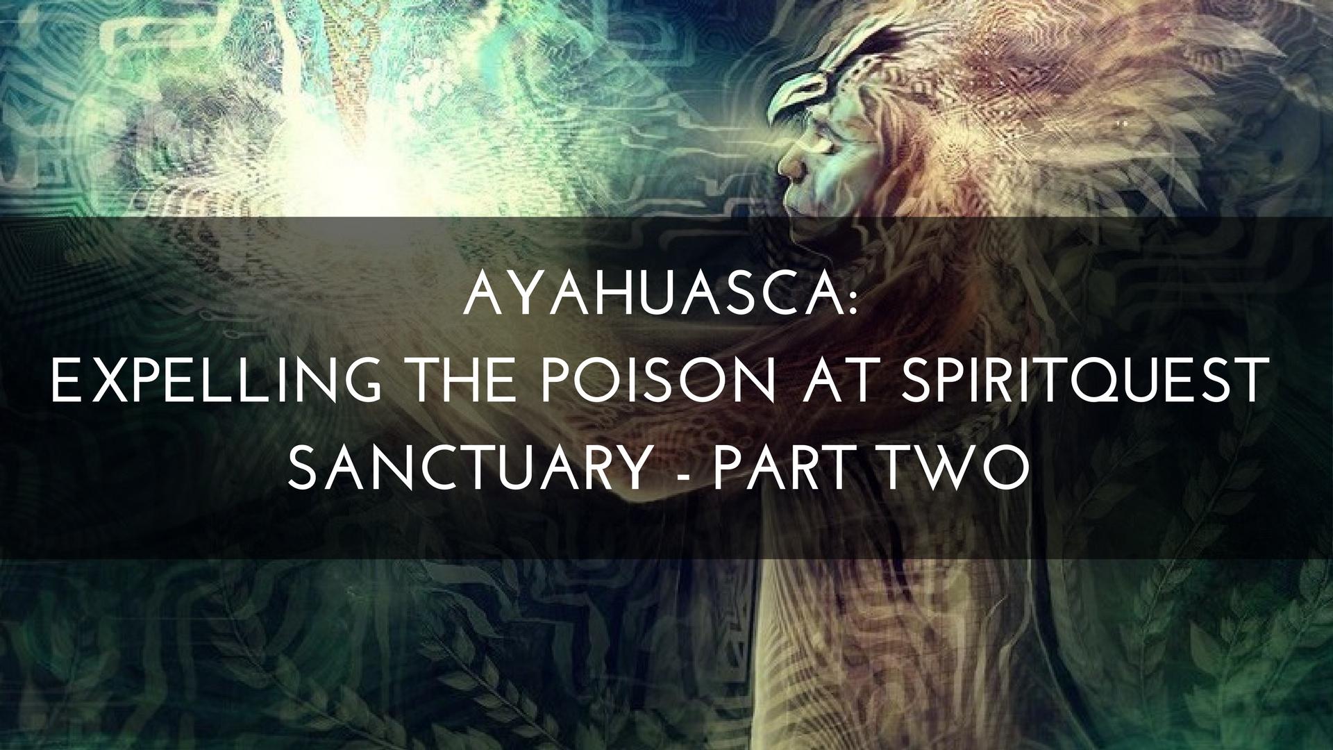 Ayahuasca: Expelling The Poison at SpiritQuest Sanctuary