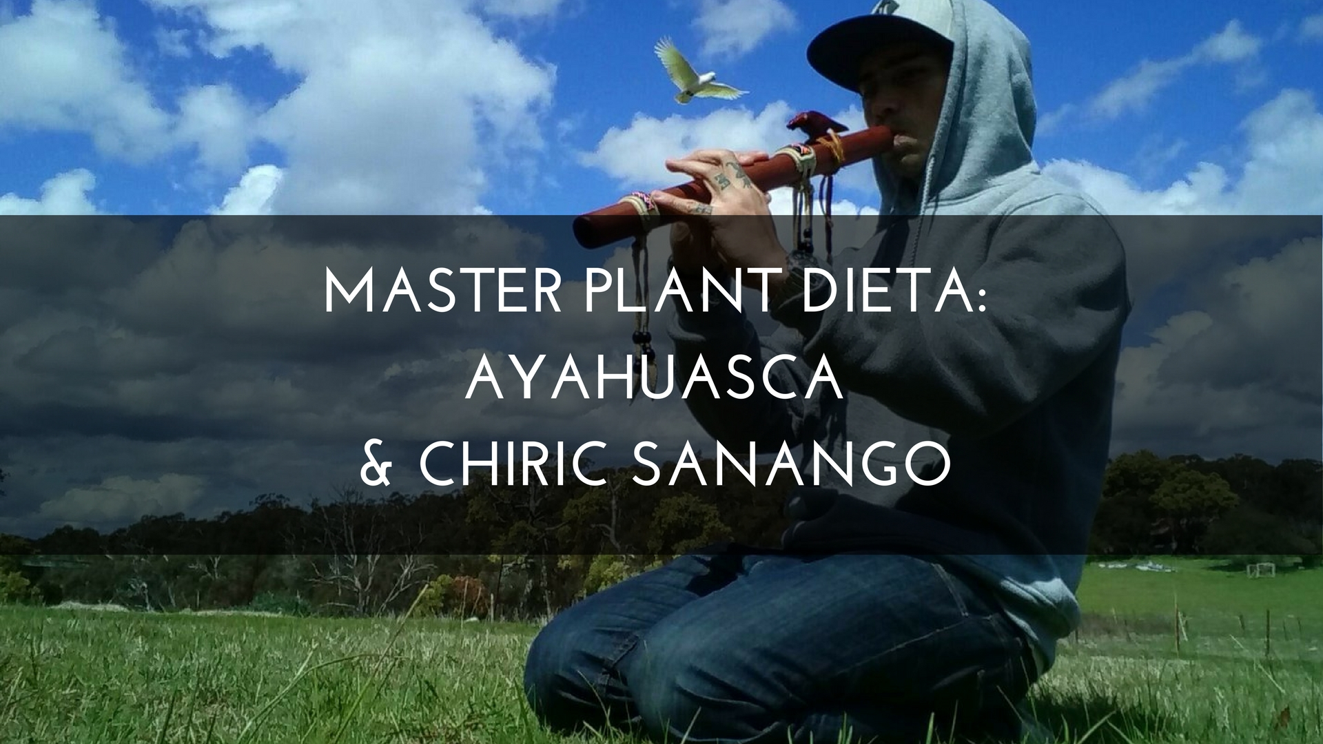 Medicine Path Master Plant Dieta: Ayahuasca & Chiric Sanango