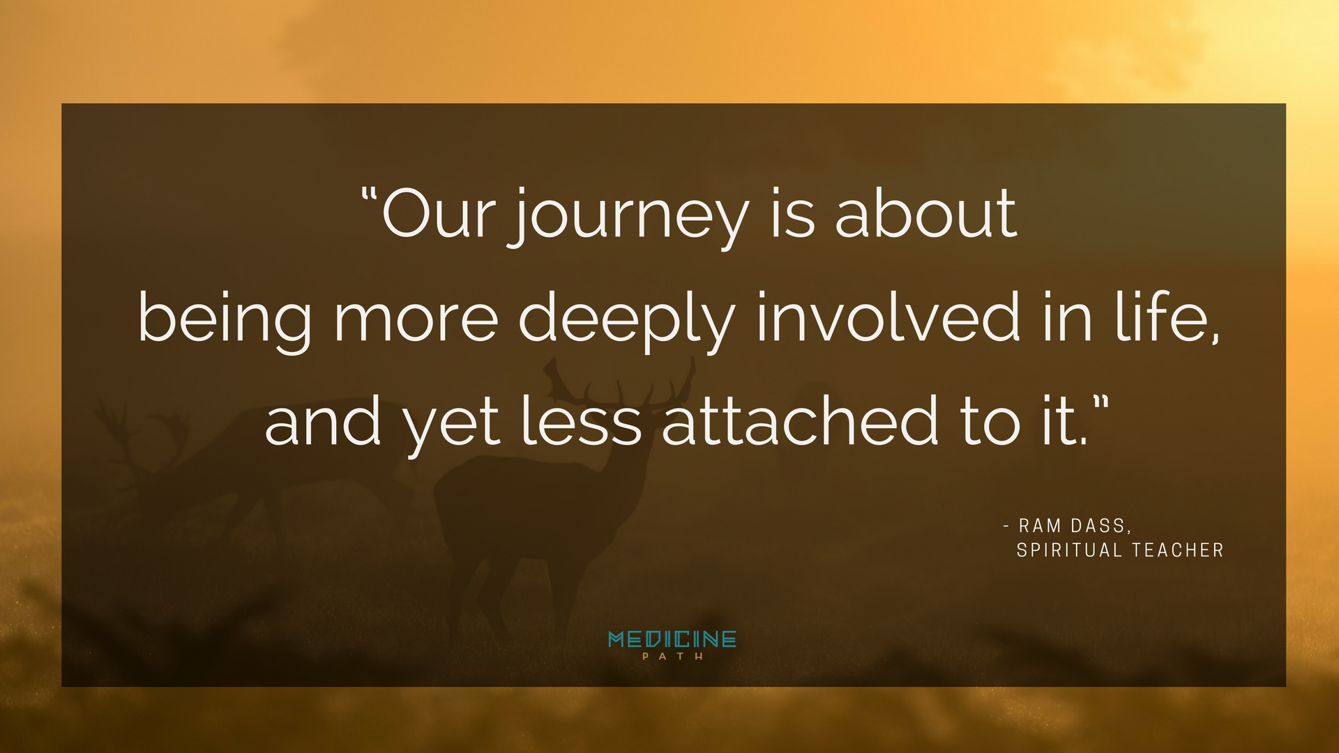 The Richness of Presence Ram Dass Quote