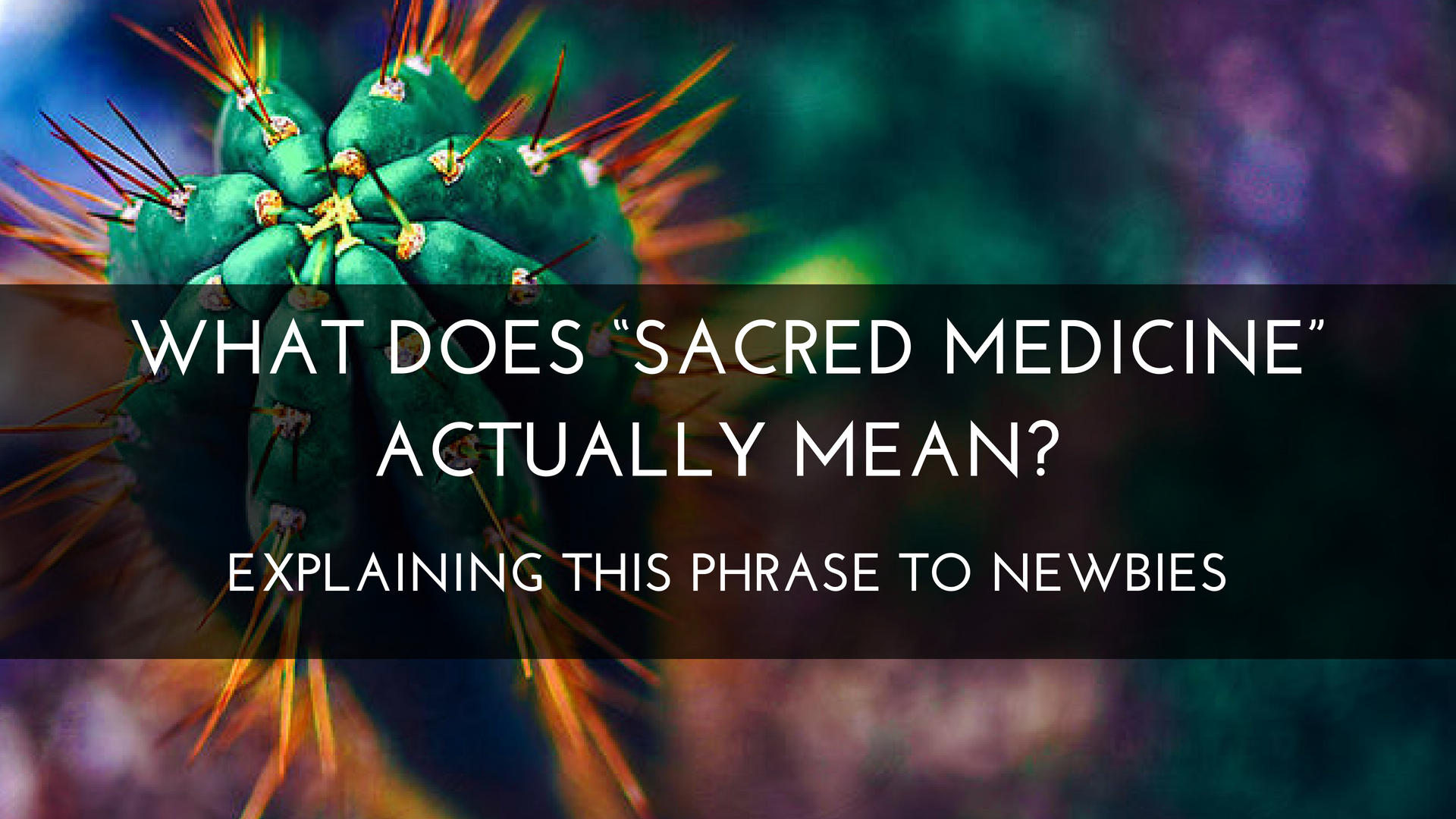 """WHAT DOES """"SACRED MEDICINE"""" ACTUALLY MEAN? EXPLAINING THIS PHRASE TO NEWBIES"""