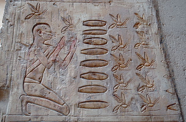 Ancient Egyptian bee reverence?