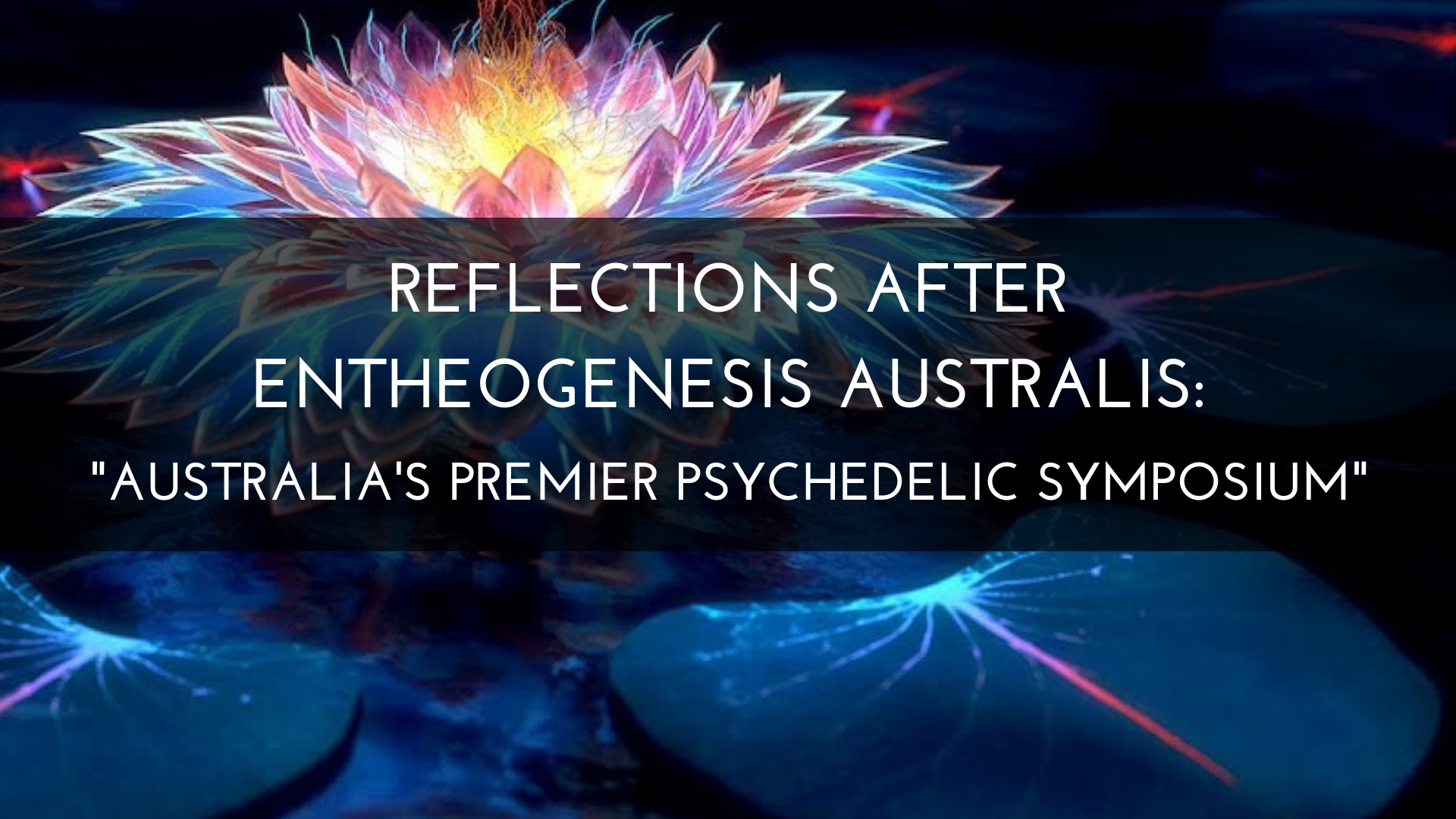 Reflections After Entheogenesis Australis