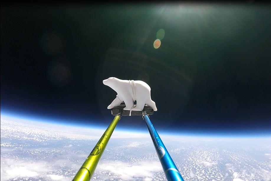 Bear in Space.JPG
