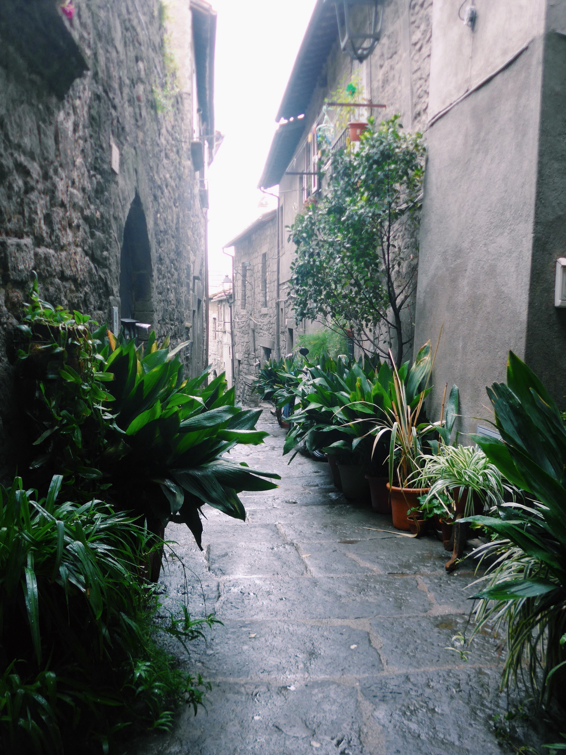 Viterbo Italy Travel