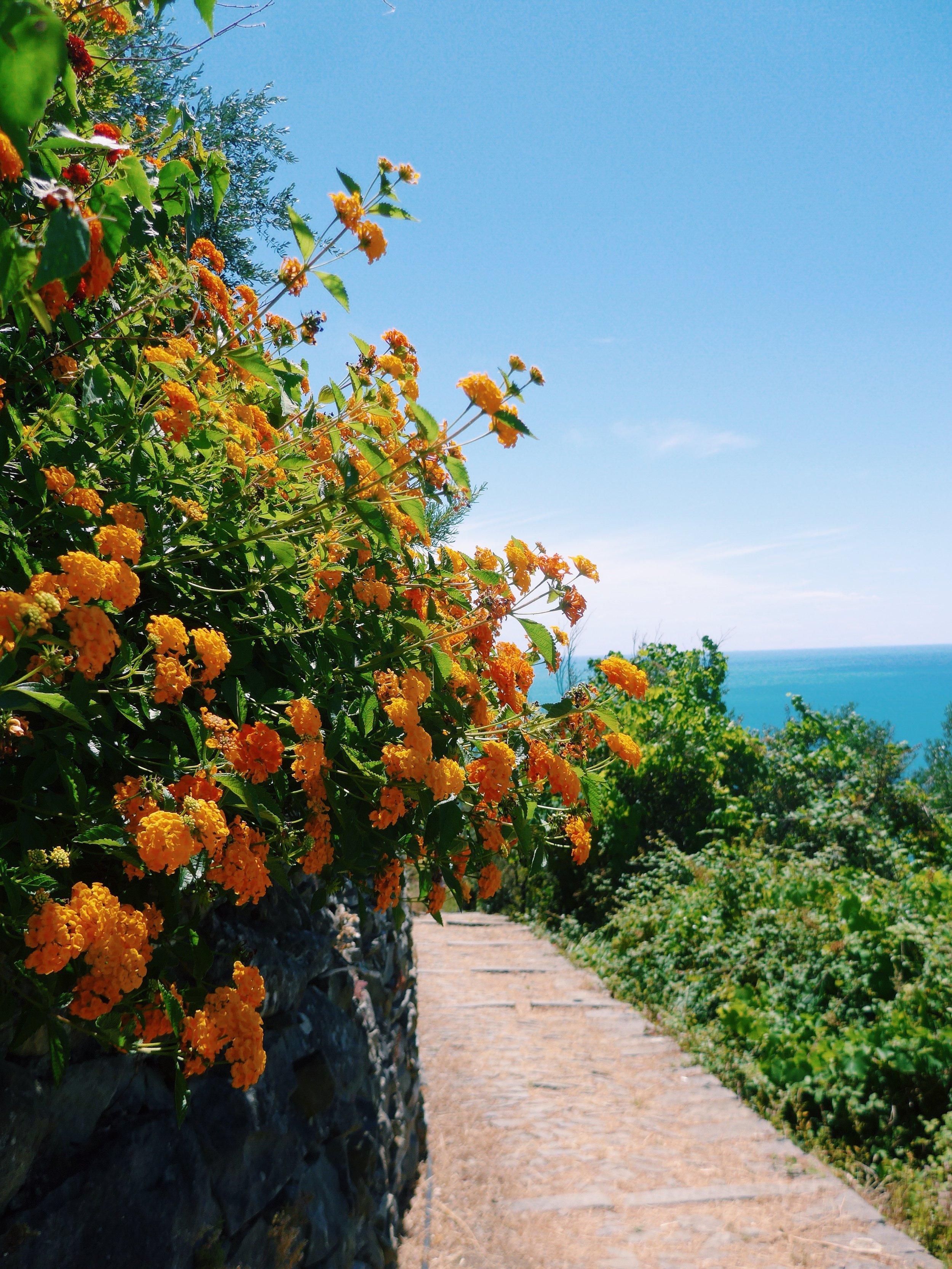 Portovenere Travel Blog