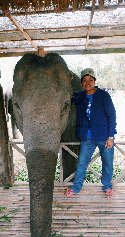 Elephant Village Laos