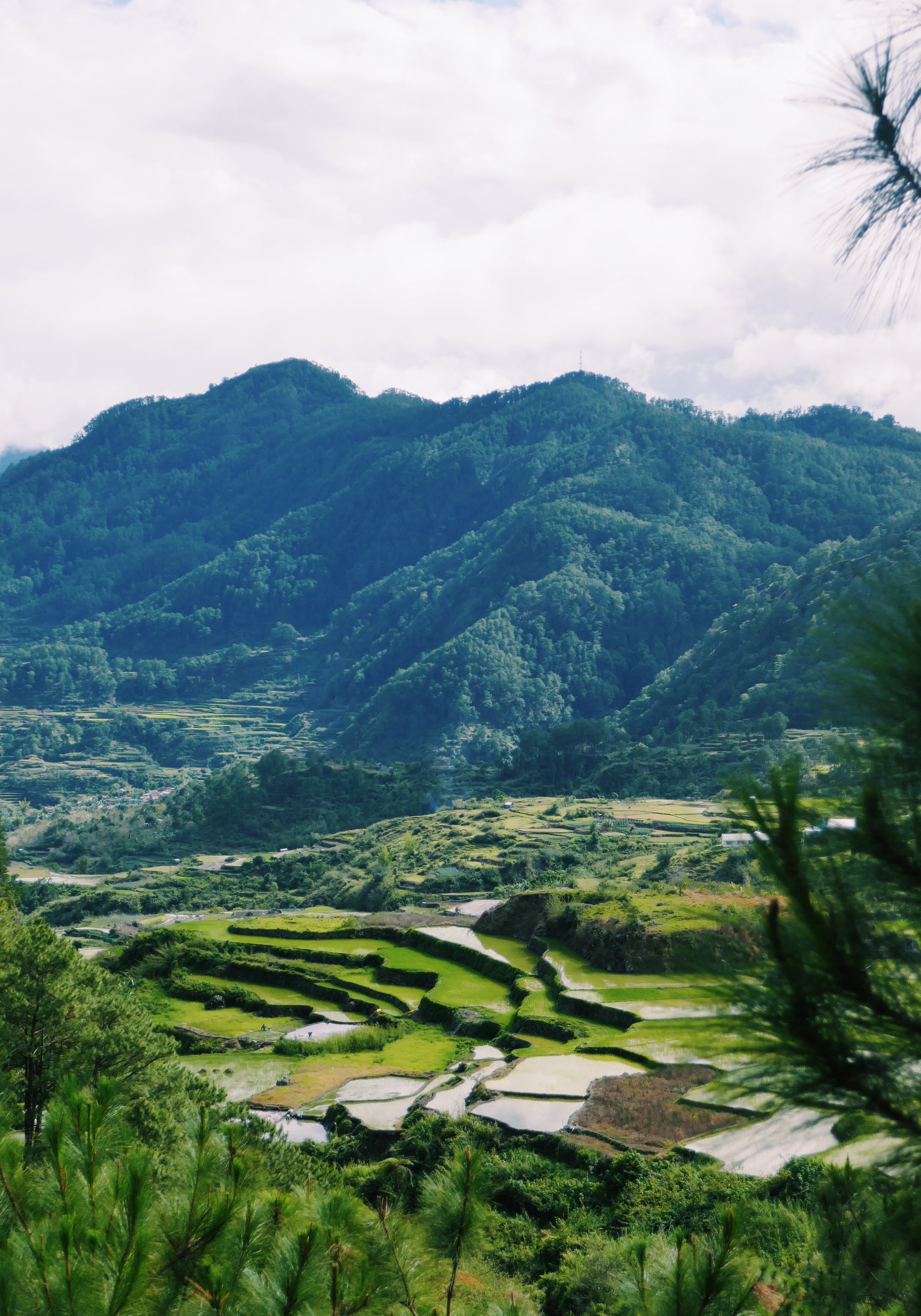 Sagada Travel Blog