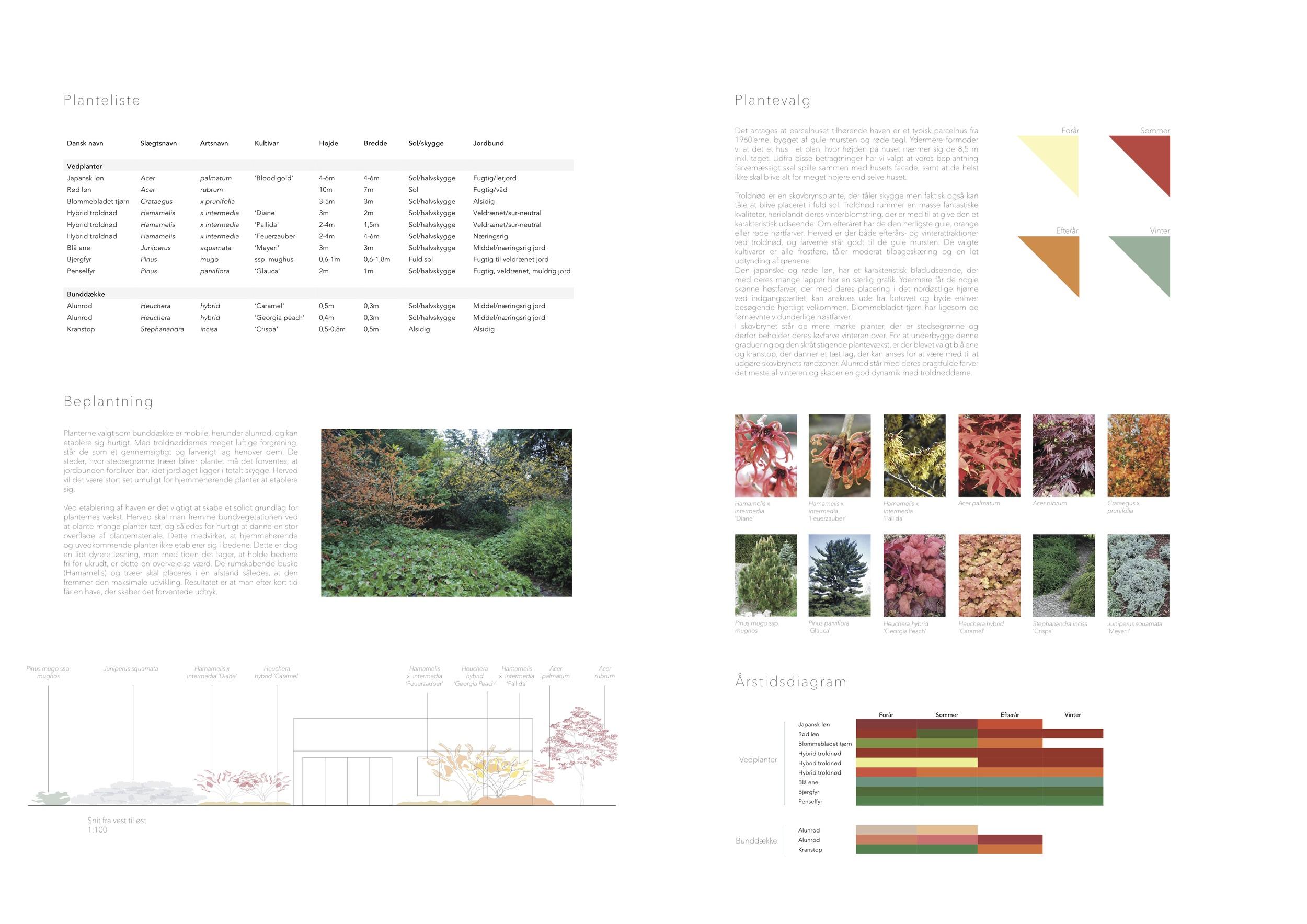 Asrosenvinge_Bep.design_4.jpg