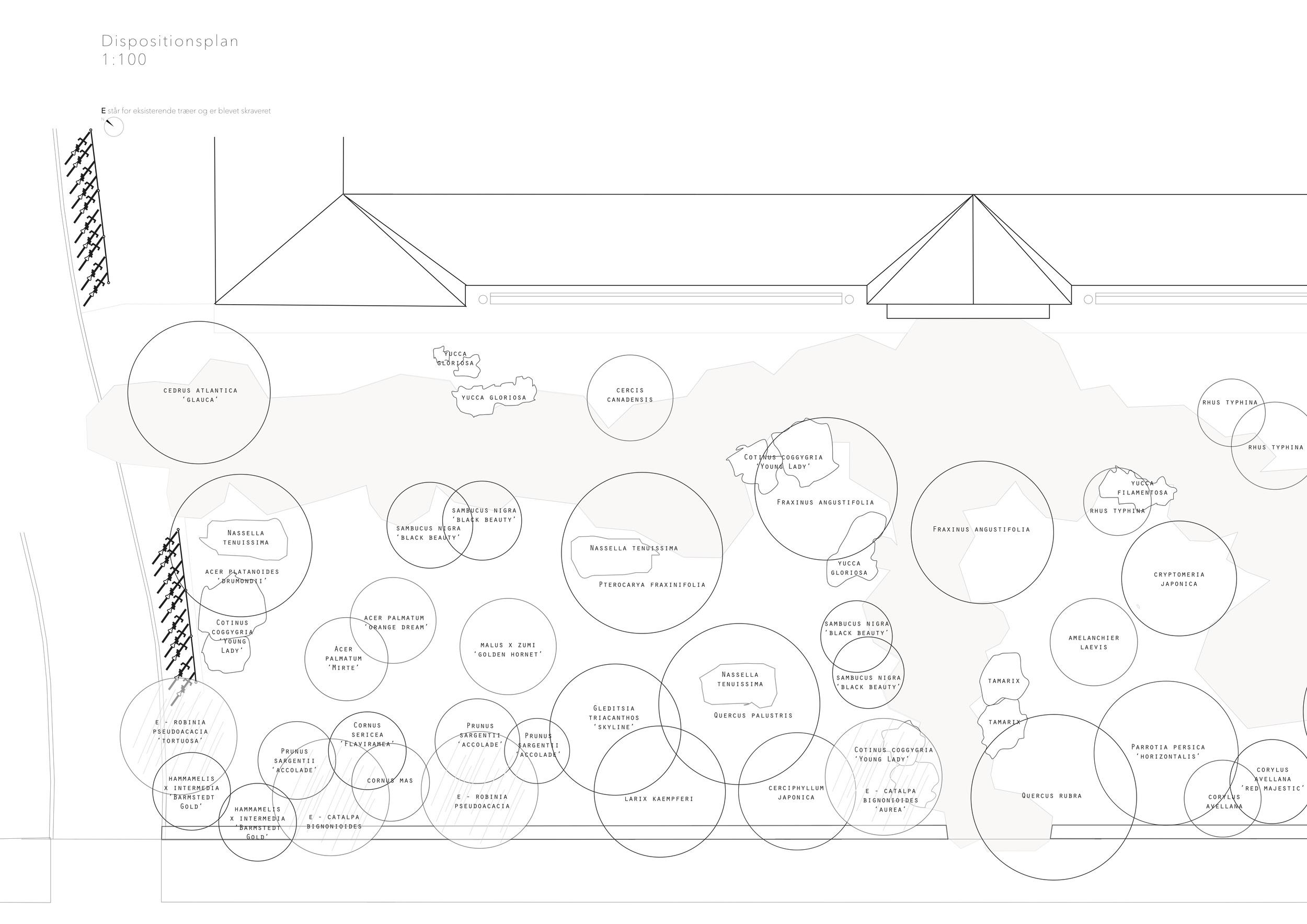 Asrosenvinge_Bep.design_10.jpg