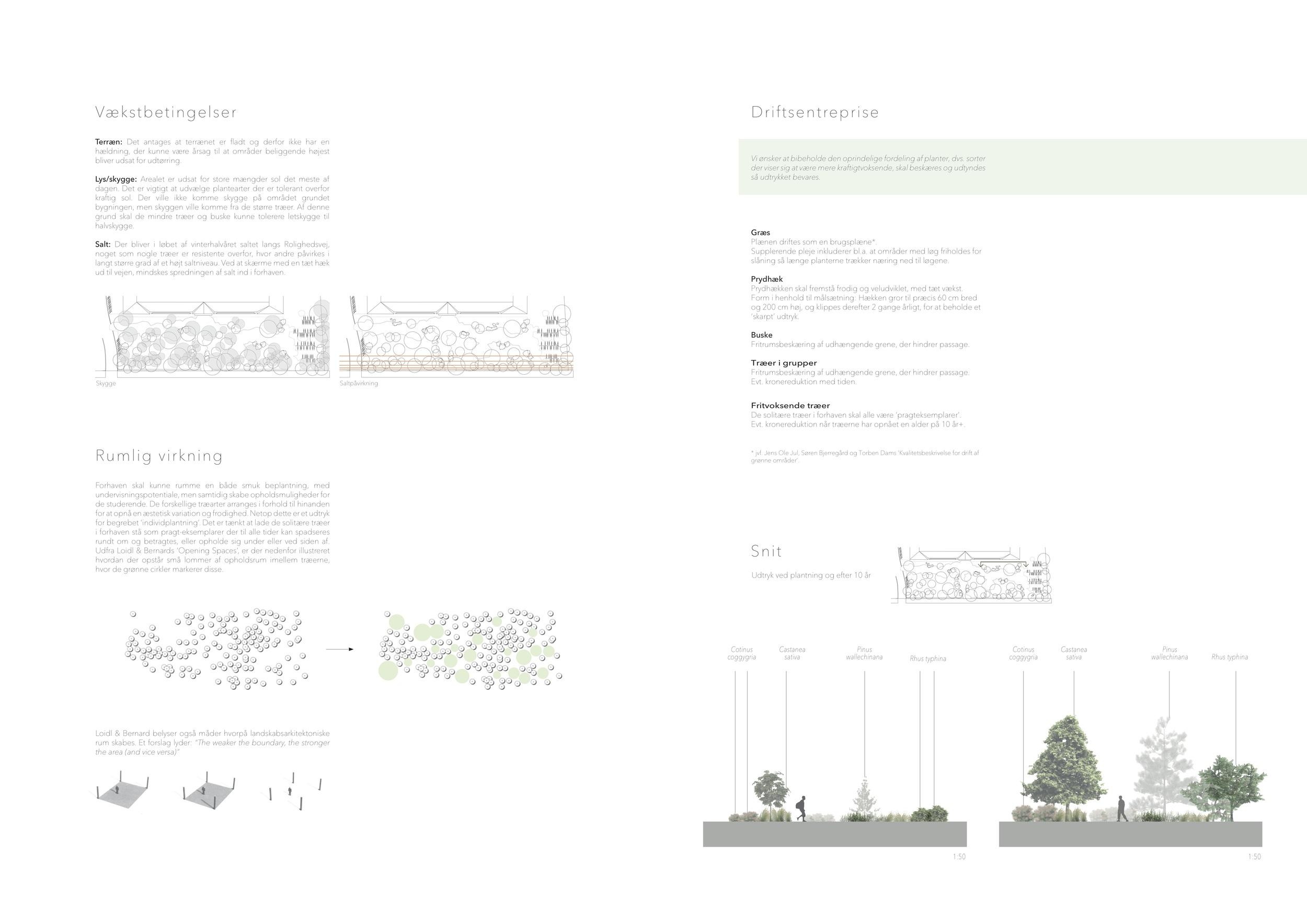 Asrosenvinge_Bep.design_12.jpg
