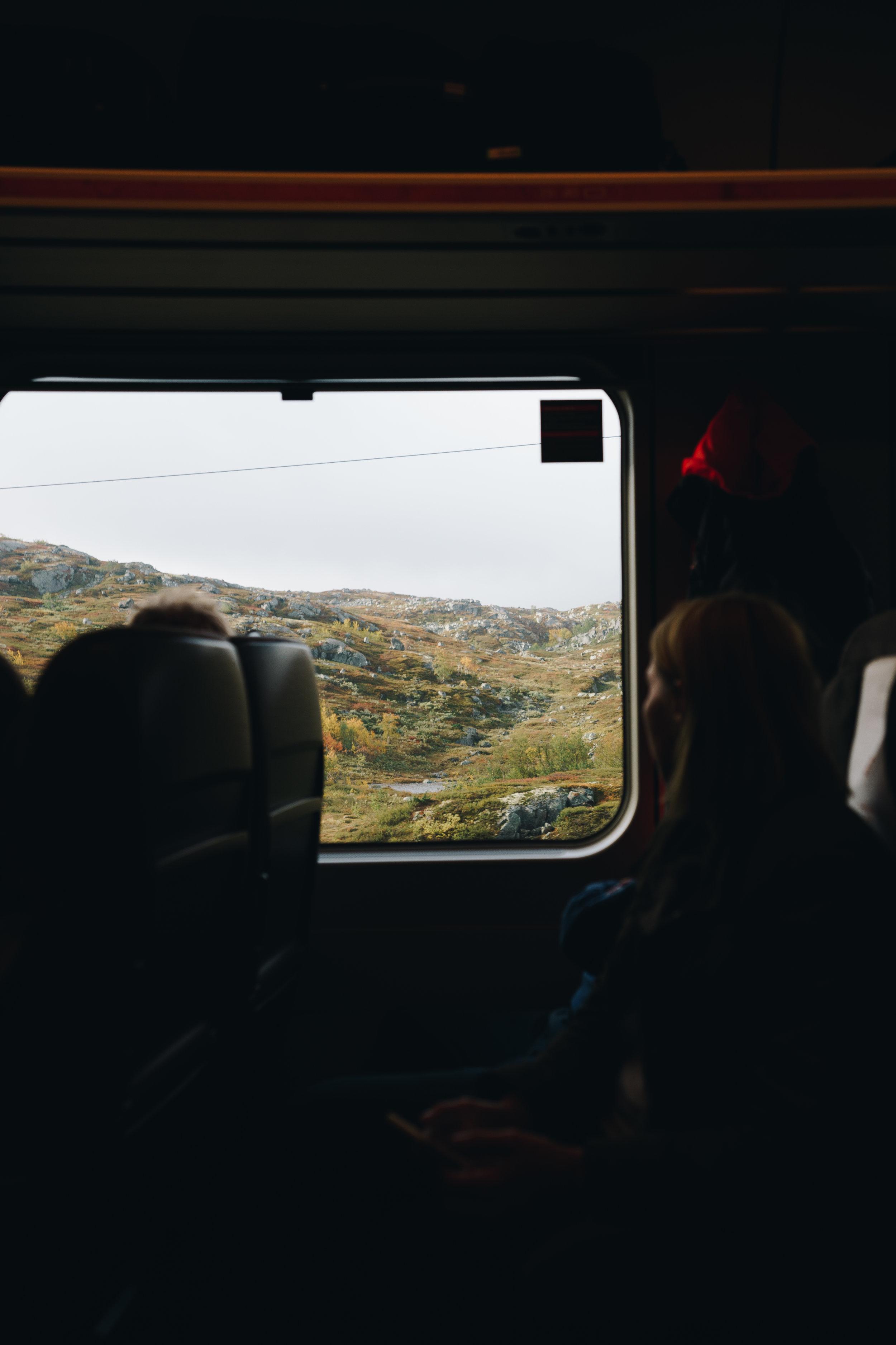 ASROSENVINGE_Interrail_Norden_2018_Bergensbanen_Togudsigt_Norge_LowRes-09995.jpg