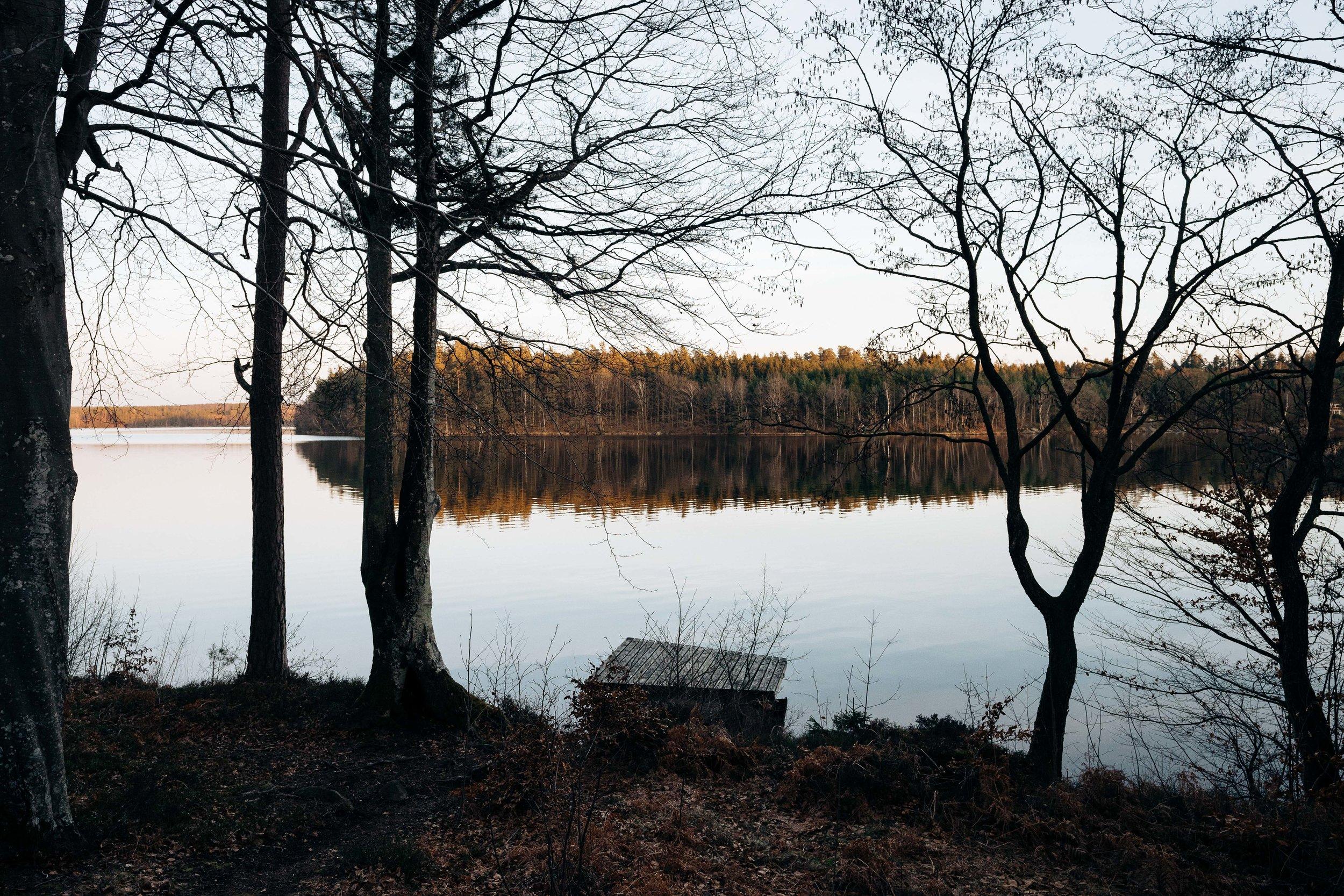 ASROSENVINGE_VIPP_Shelter_Immeln_Sweden-02593.jpg