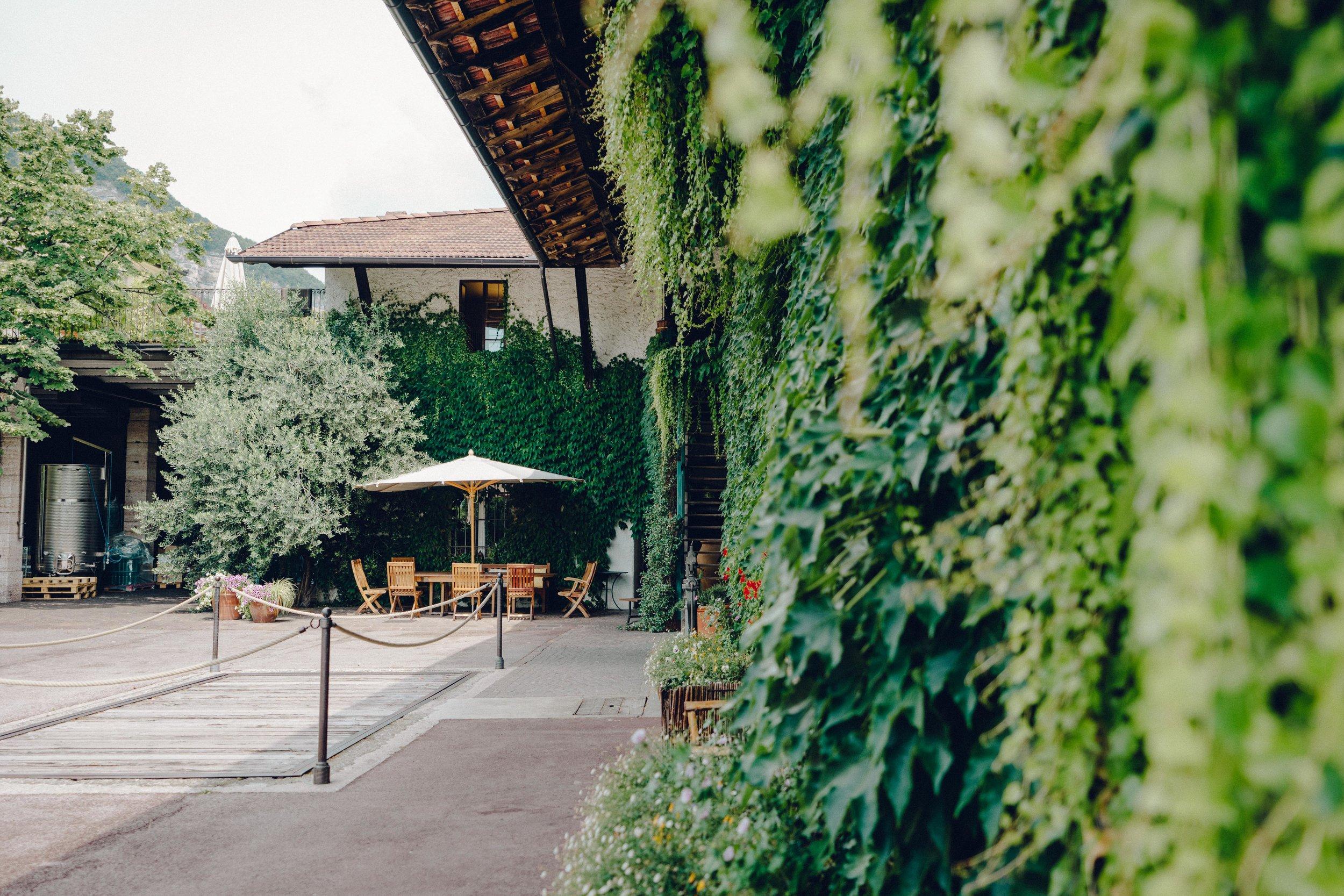 ASROSENVINGE_Italy_Roadtrip_Italy-06624.jpg