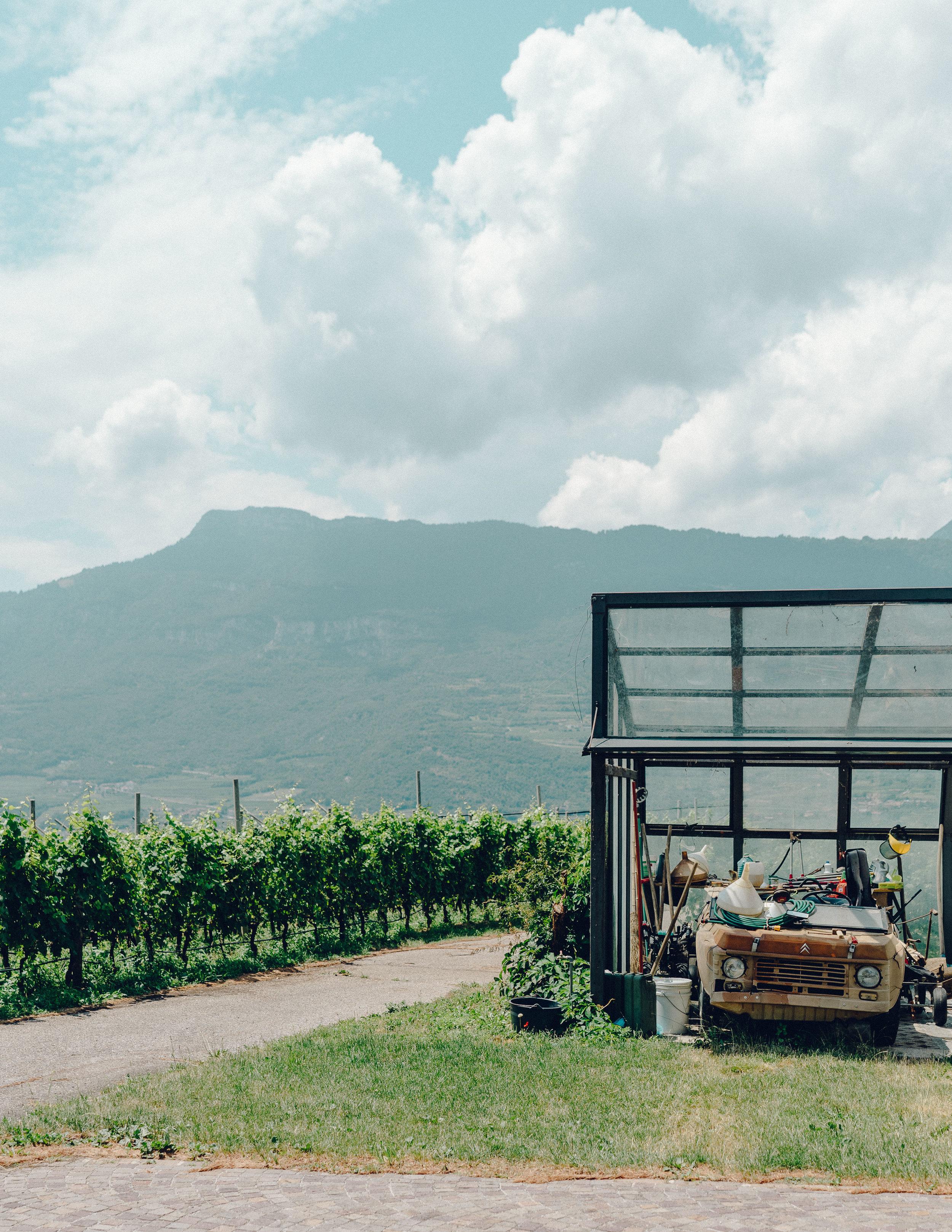 ASROSENVINGE_Roadtrip_Italy_Dolomites_Trentino_Rovereto_Elisabetta_Dalzocchio-06644.jpg