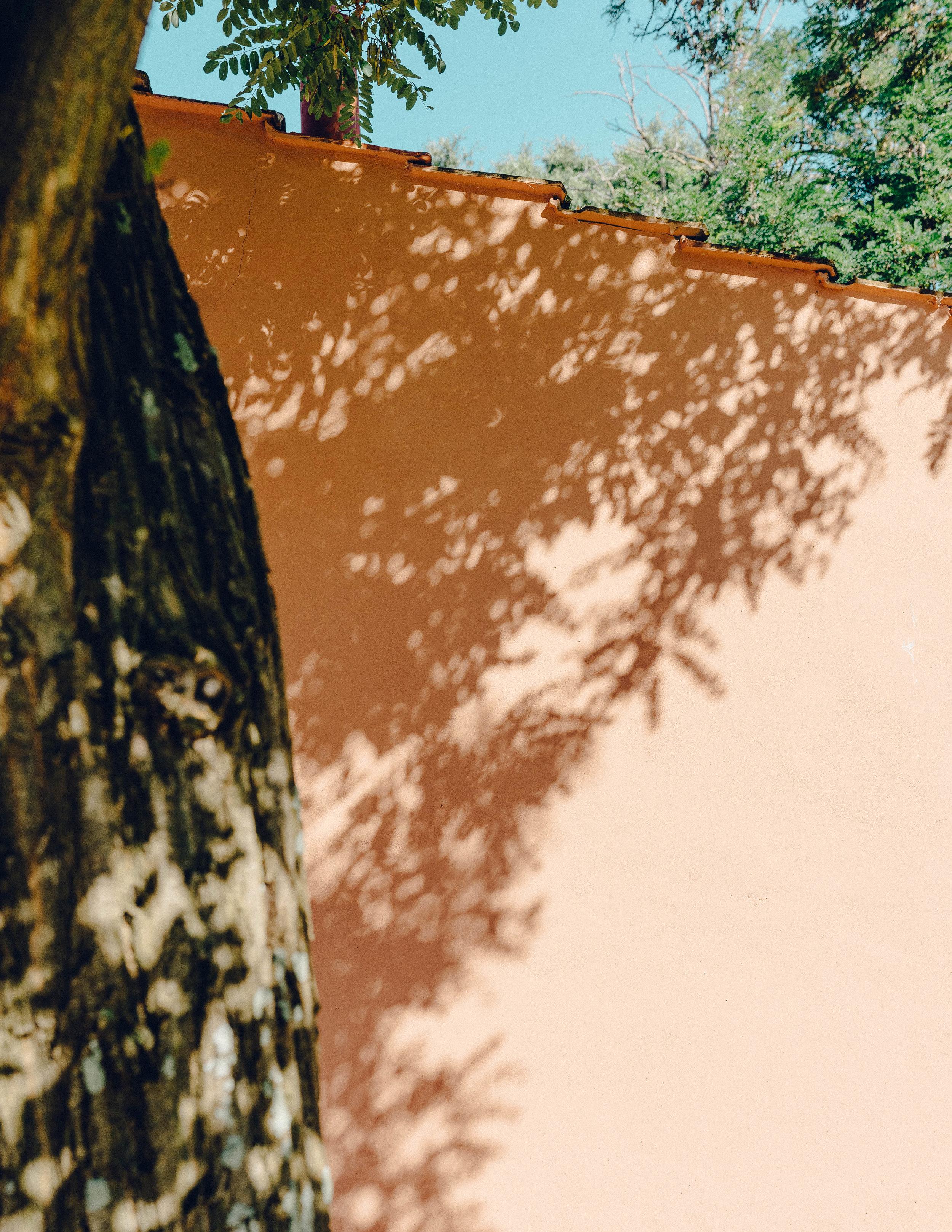 ASROSENVINGE_Roadtrip_Italy_Toscana-07706.jpg