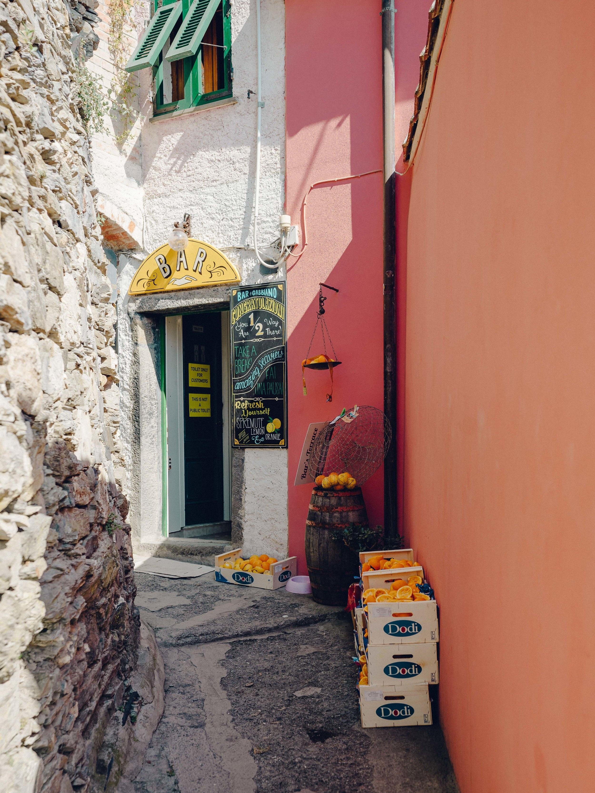 ASROSENVINGE_Roadtrip_Italy_Cinque_Terre-08101.jpg