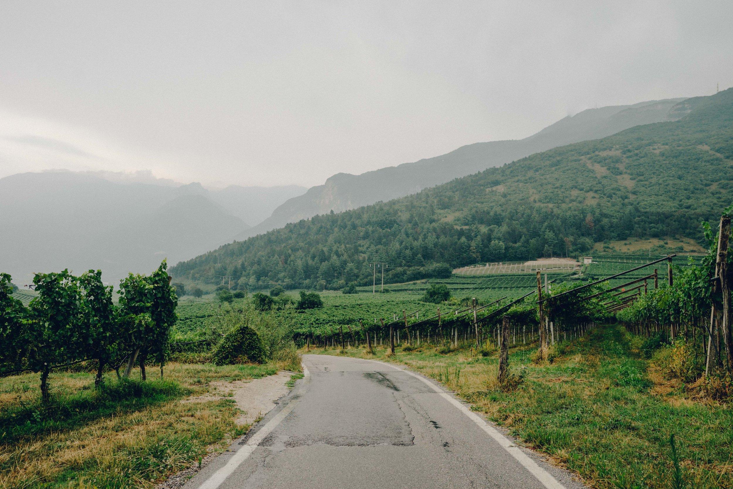 ASROSENVINGE_Roadtrip_Italy_Trentino-08217.jpg